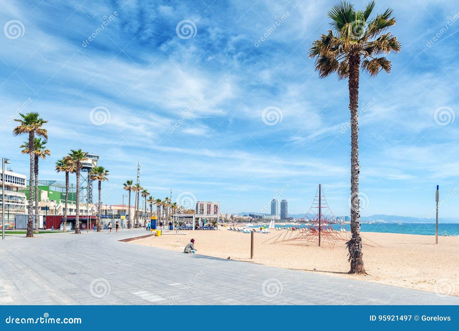 Einsamer Mann Sitzt Nahe Palme Am Sandigen Strand Von Barcelona