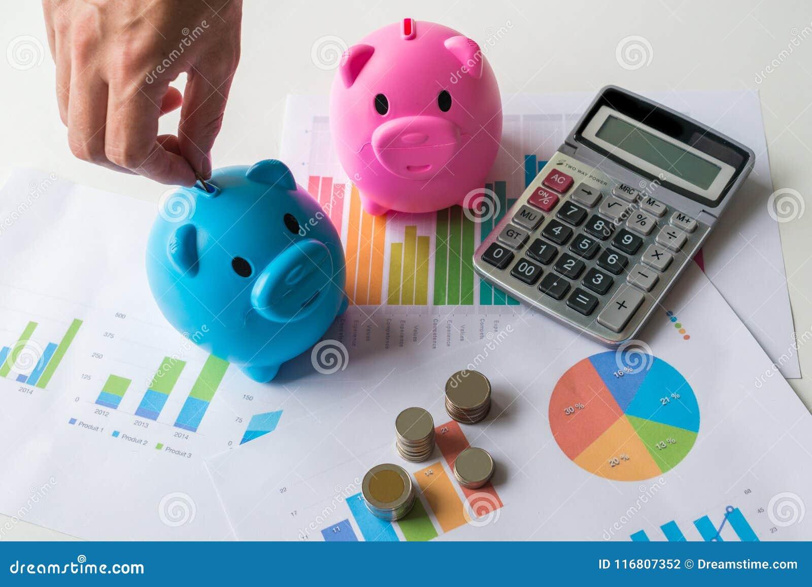 Einsparungsgeldkonzept mit blauem und rosa Sparschwein mit Taschenrechner