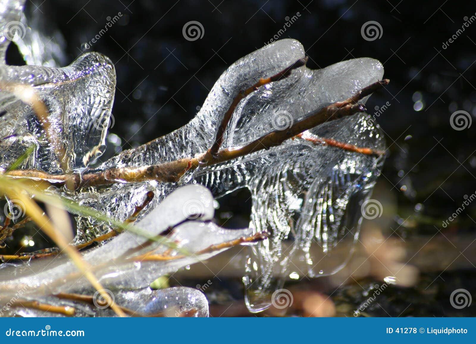 Eis auf Weiden 3