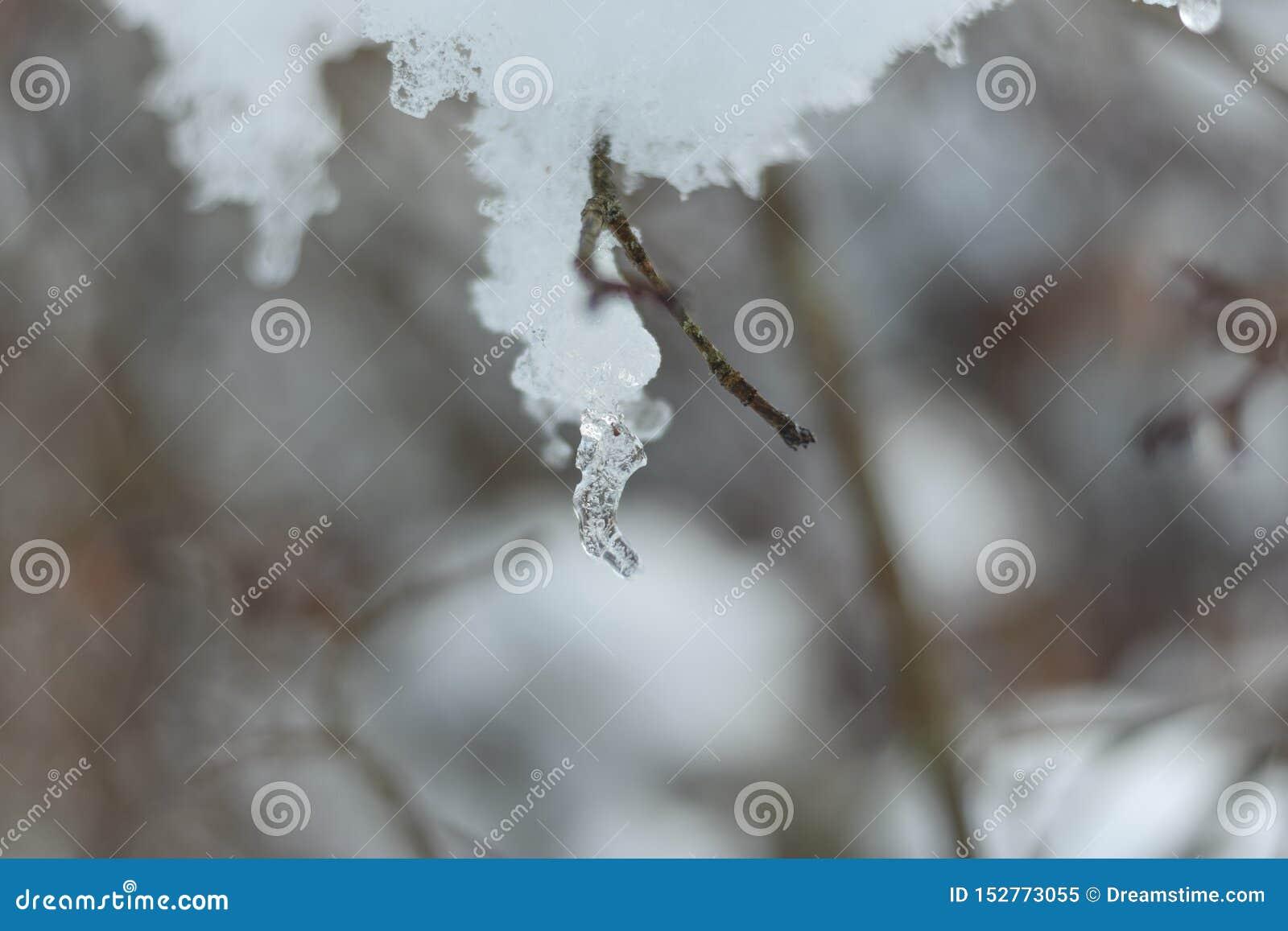 Eis und Schnee in einer Niederlassung