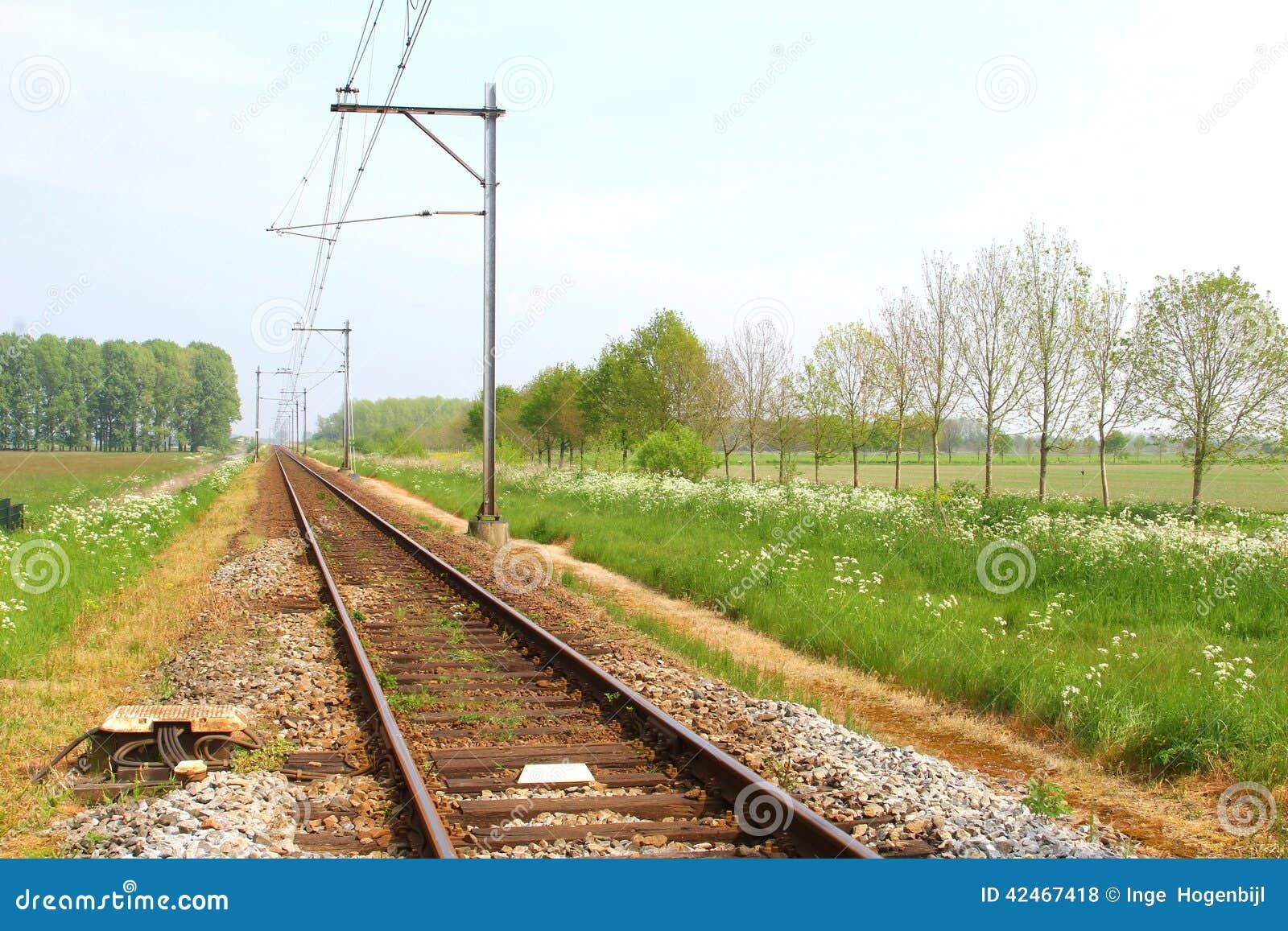 Eisenbahn in der Landschaft der Niederlande