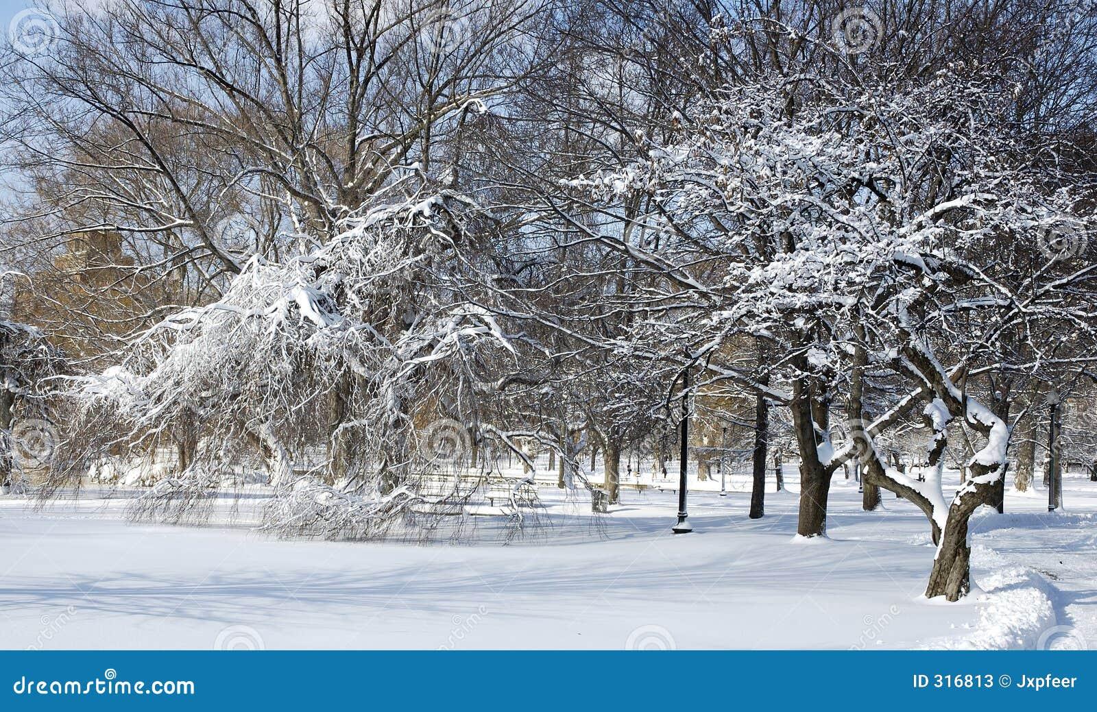 Eisiger Park