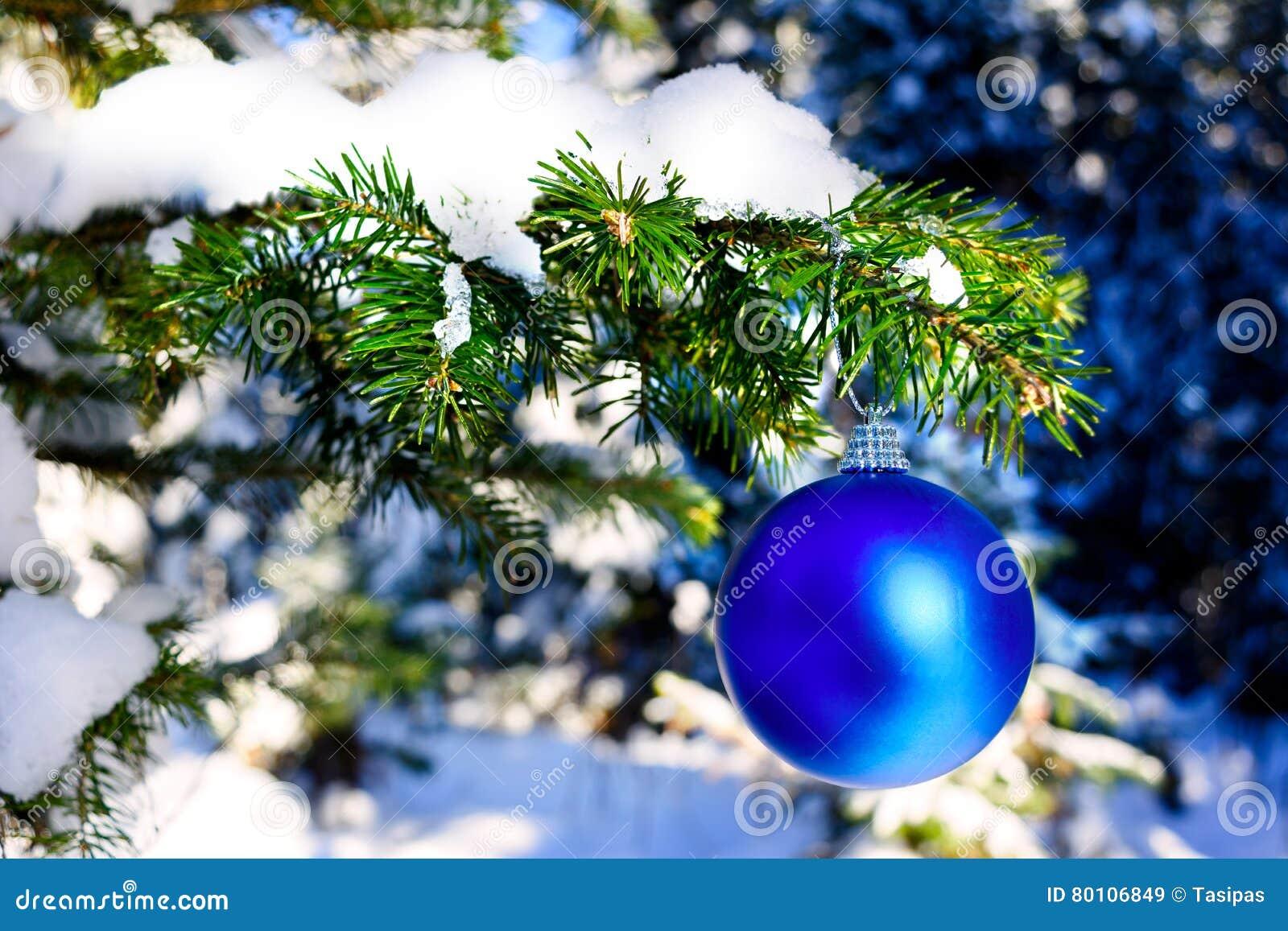 Ejecución azul del ornamento de la Navidad en rama del árbol forestal