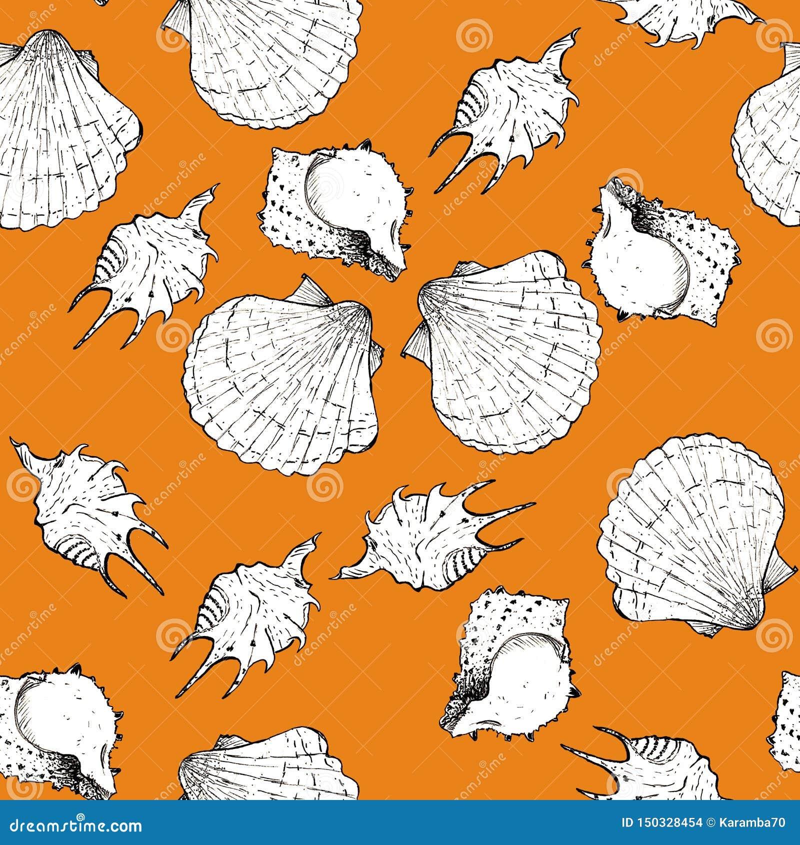 Ejemplo blanco y negro del bosquejo de conchas marinas en el fondo oscuro de moda 2019-2020 de Panton del color del queso Modelo