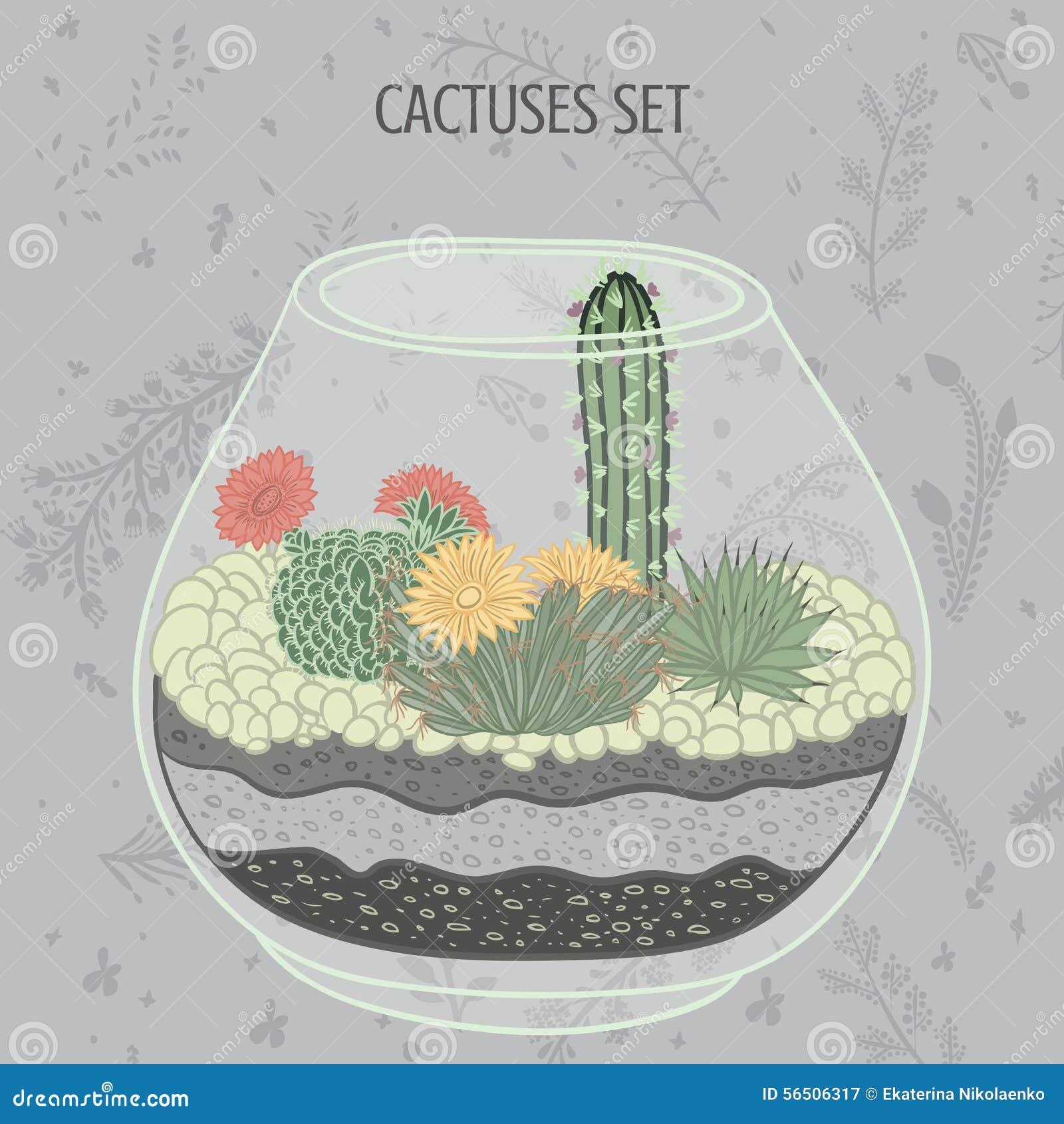 Ejemplo colorido plano de plantas y de cactus suculentos en acuario