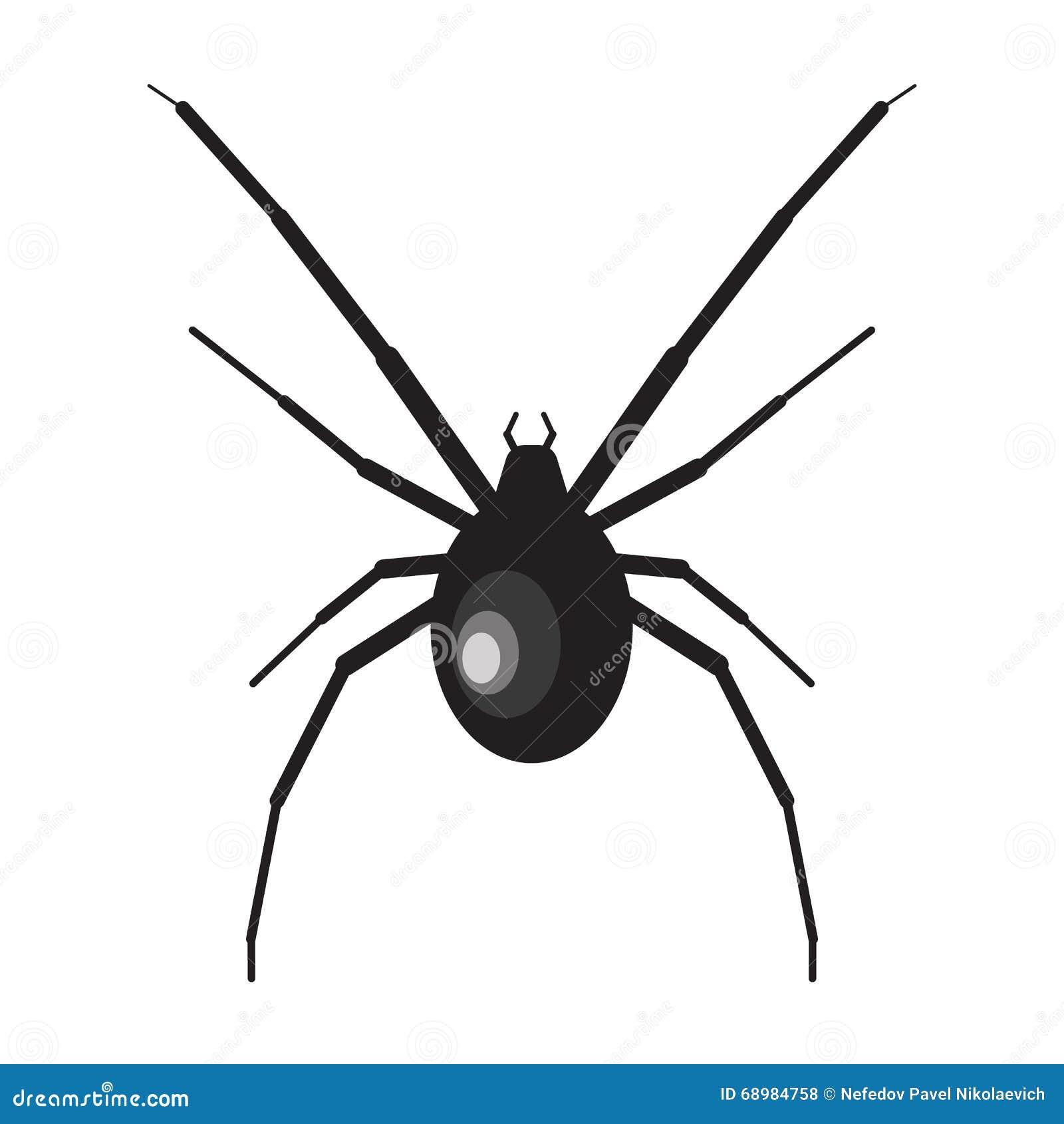 Ejemplo de la araña de la viuda negra araña en el fondo blanco Viuda negra Ejemplo de la araña Araña de la viuda negra