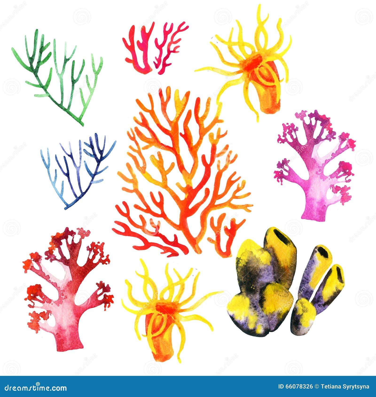 Ejemplo De Los Arrecifes De Coral Coloridos Stock de ilustración ...