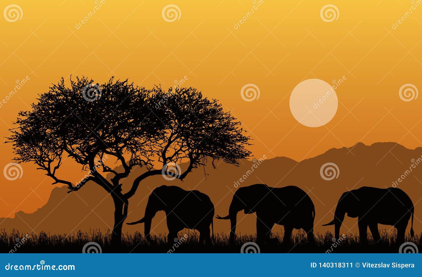 Ejemplo de siluetas del paisaje de la montaña del safari africano con el árbol, la hierba y tres elefantes Debajo del cielo anara
