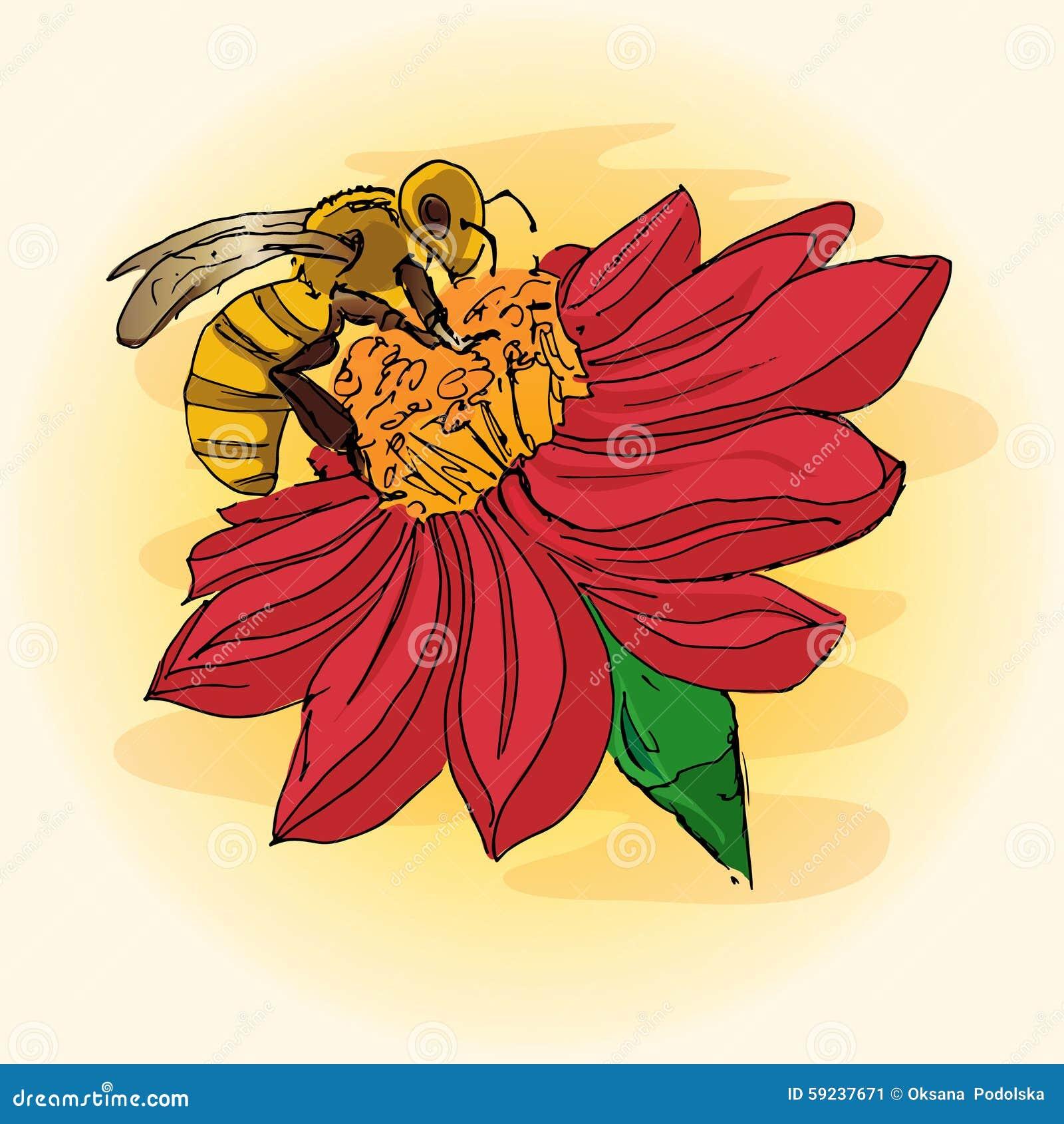 Ejemplo De Una Abeja En Una Flor Polinizaci 243 N Mano