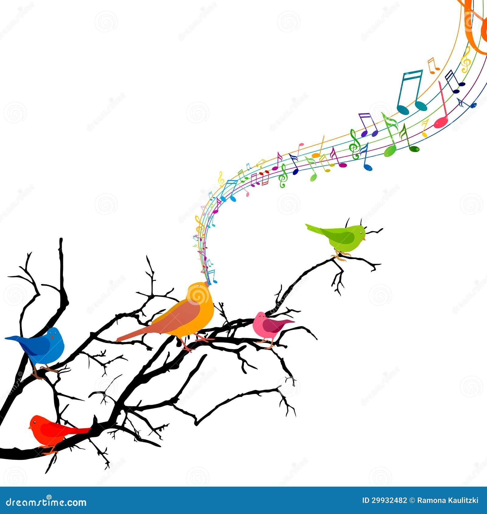 Pájaros del canto
