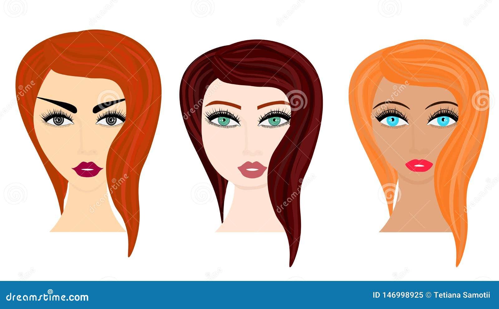 Ejemplo del estilo de la historieta del vector de la web de diversos peinados de la mujer