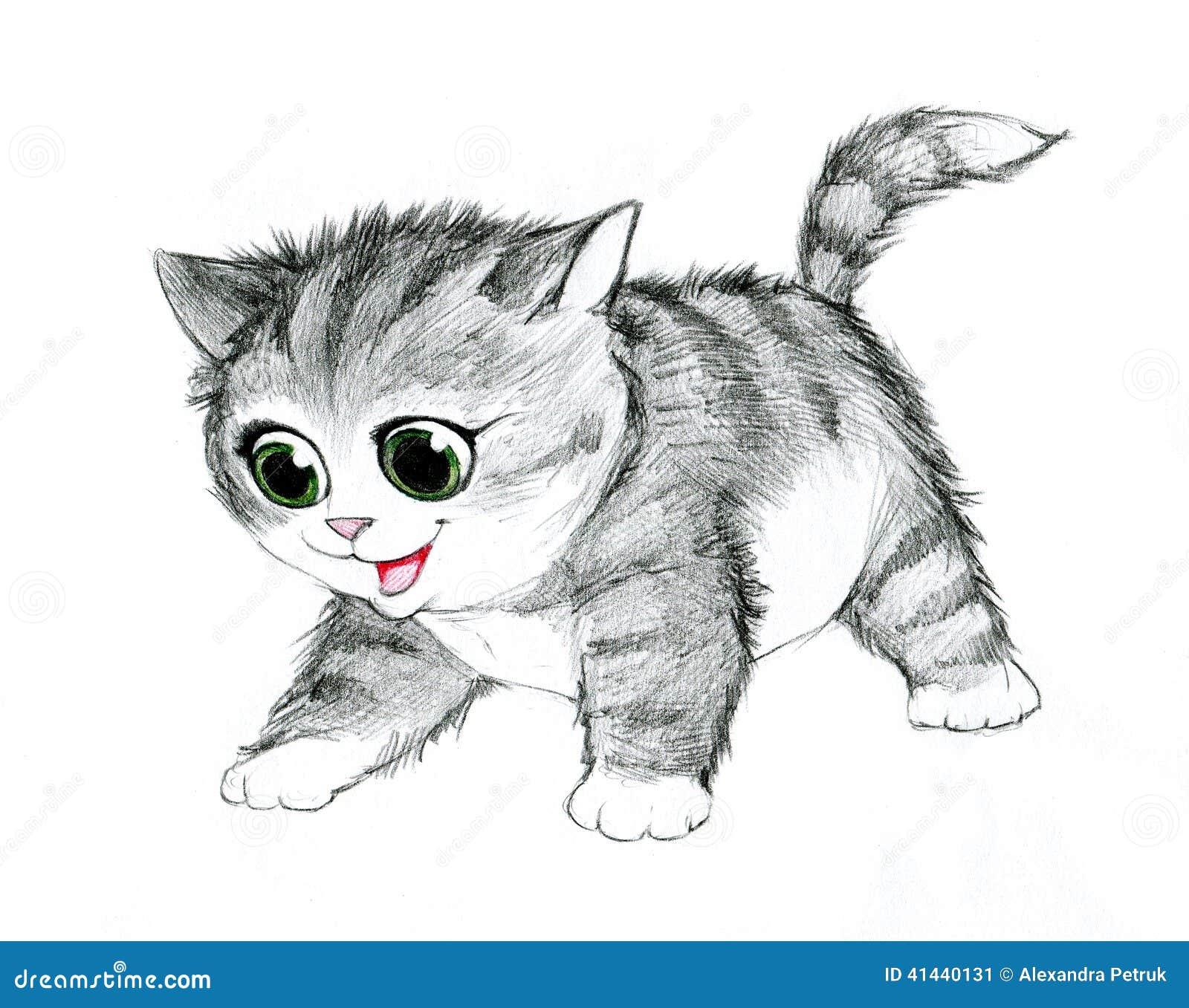 Ejemplo Del Lápiz De Un Gato Stock De Ilustración Ilustración De