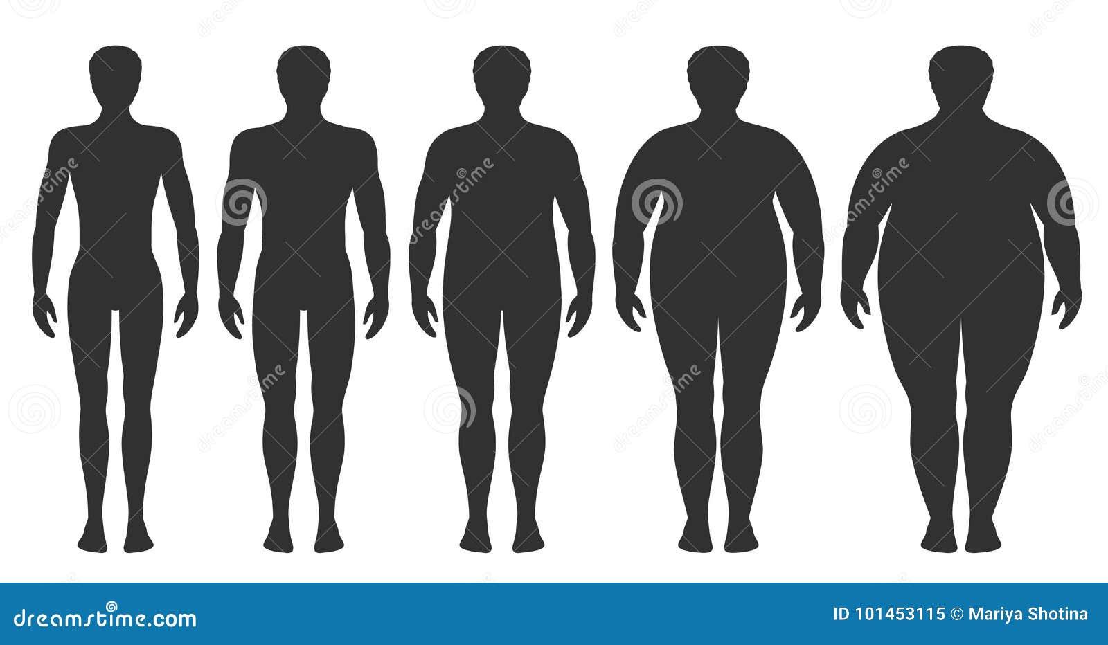Ejemplo del vector del índice de masa corporal del peso insuficiente a extremadamente obeso Siluetas del hombre con diversos grad