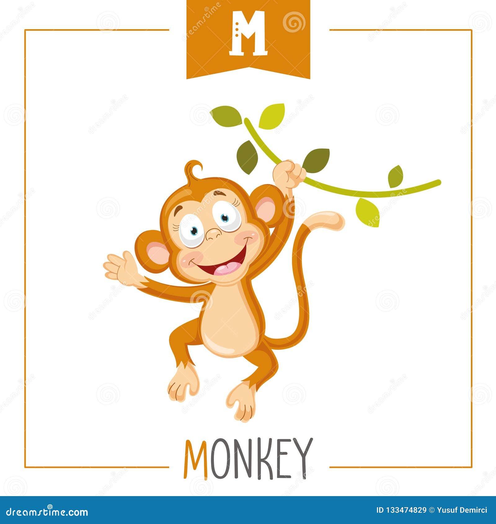 Ejemplo Del Vector De La Letra M And Monkey Del Alfabeto