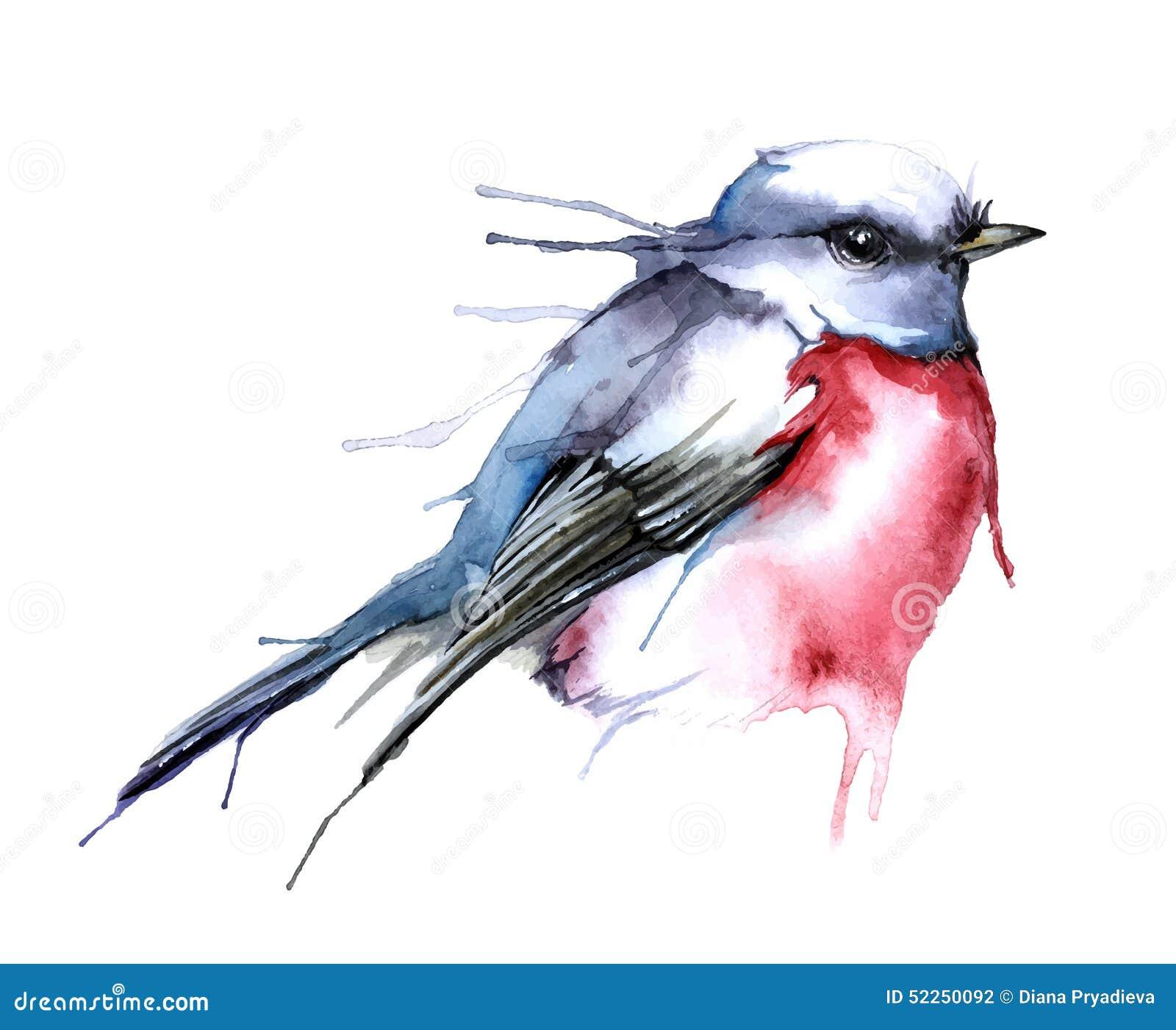 Ejemplo del vector del estilo de la acuarela del pájaro