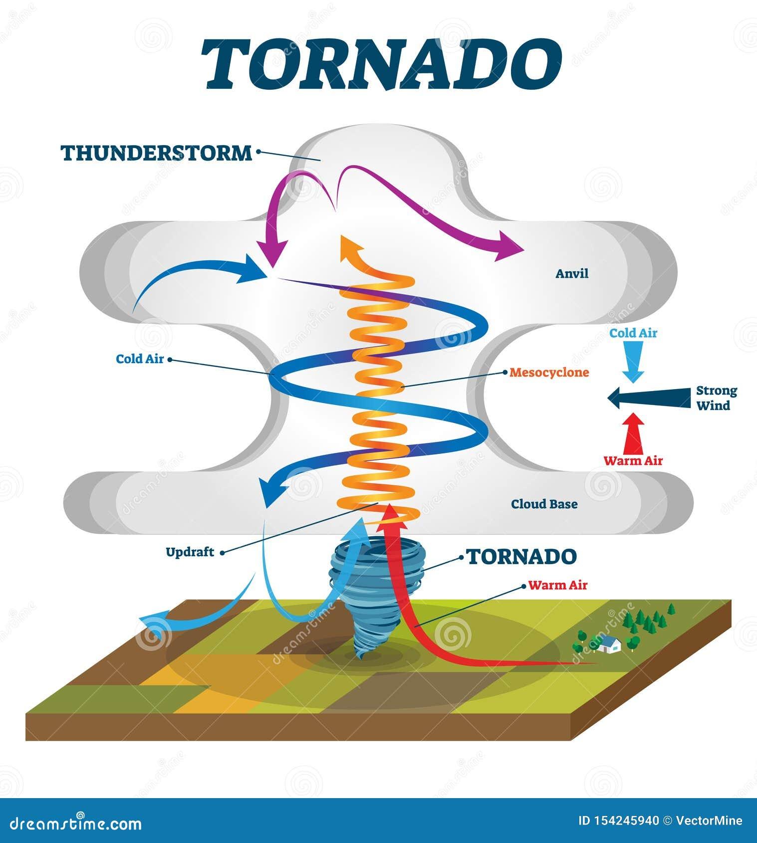 Ejemplo del vector del tornado Explicación educativa etiquetada del vórtice del viento