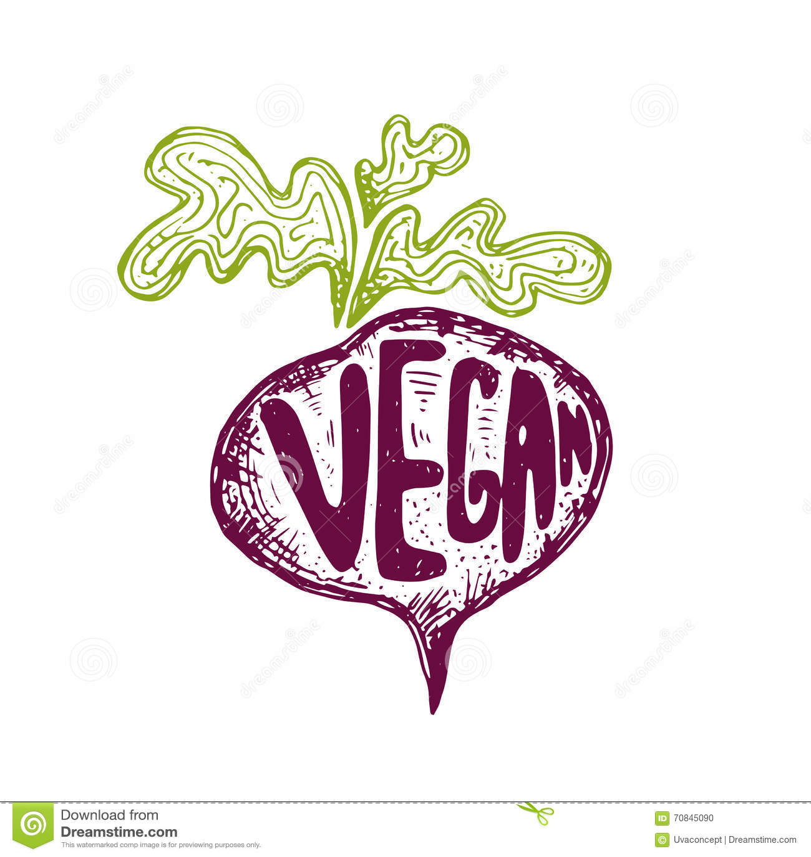 Ejemplo del vegano dibujado mano del texto de las remolachas Vector