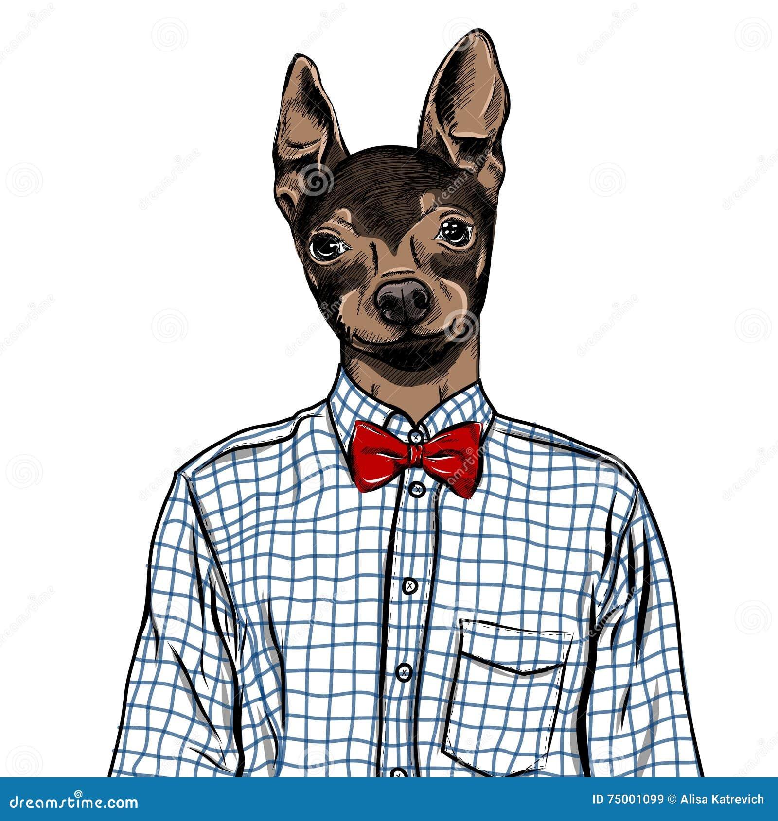Ejemplo dibujado mano de la moda para arriba vestido del inglés Toy Terrier, en colores Vector