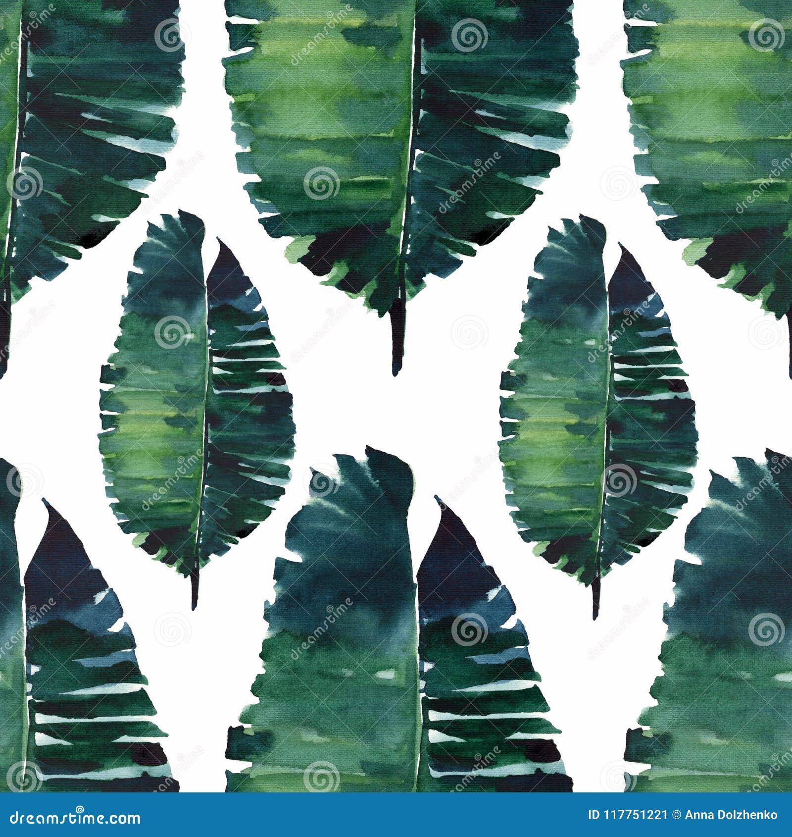 Ejemplo herbario floral maravilloso precioso lindo tropical de la mano de la acuarela de las hojas de palma del verde del verano
