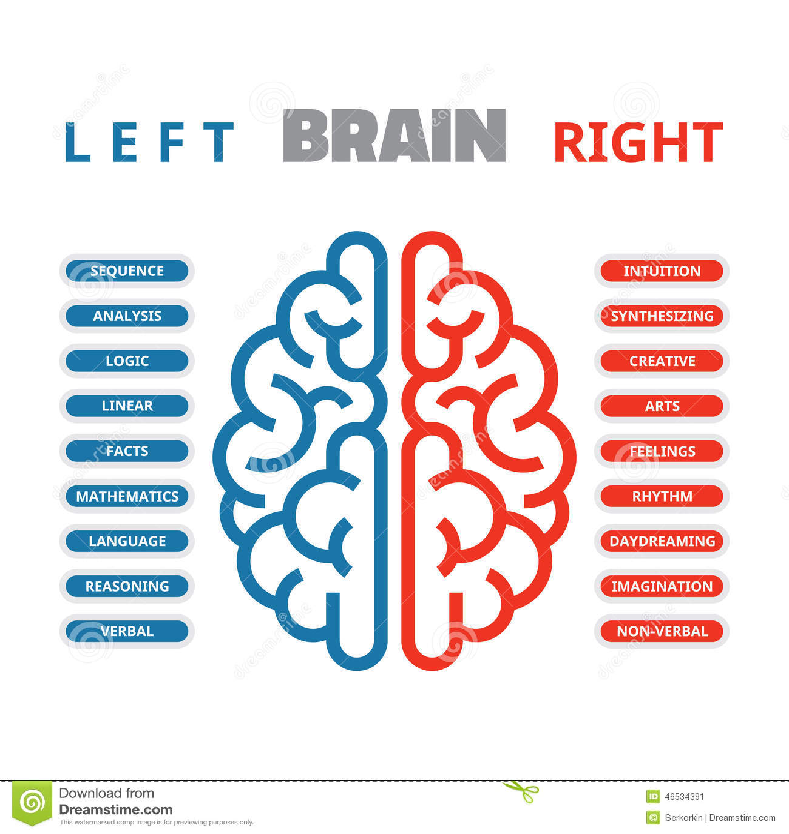 Ejemplo izquierdo y derecho del vector del cerebro humano Cerebro humano izquierdo y derecho infographic