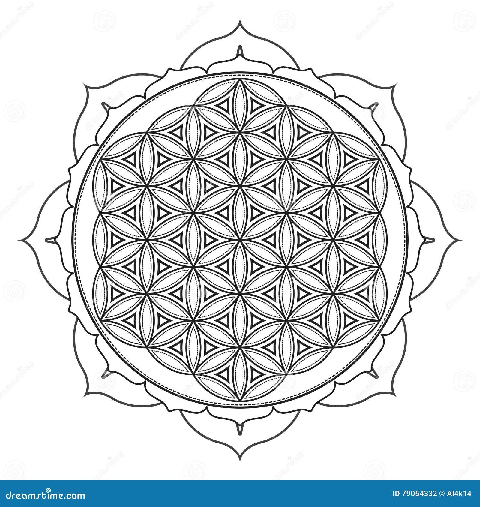 Ejemplo Sagrado De La Geometría De La Mandala Del Vector Ilustración ...