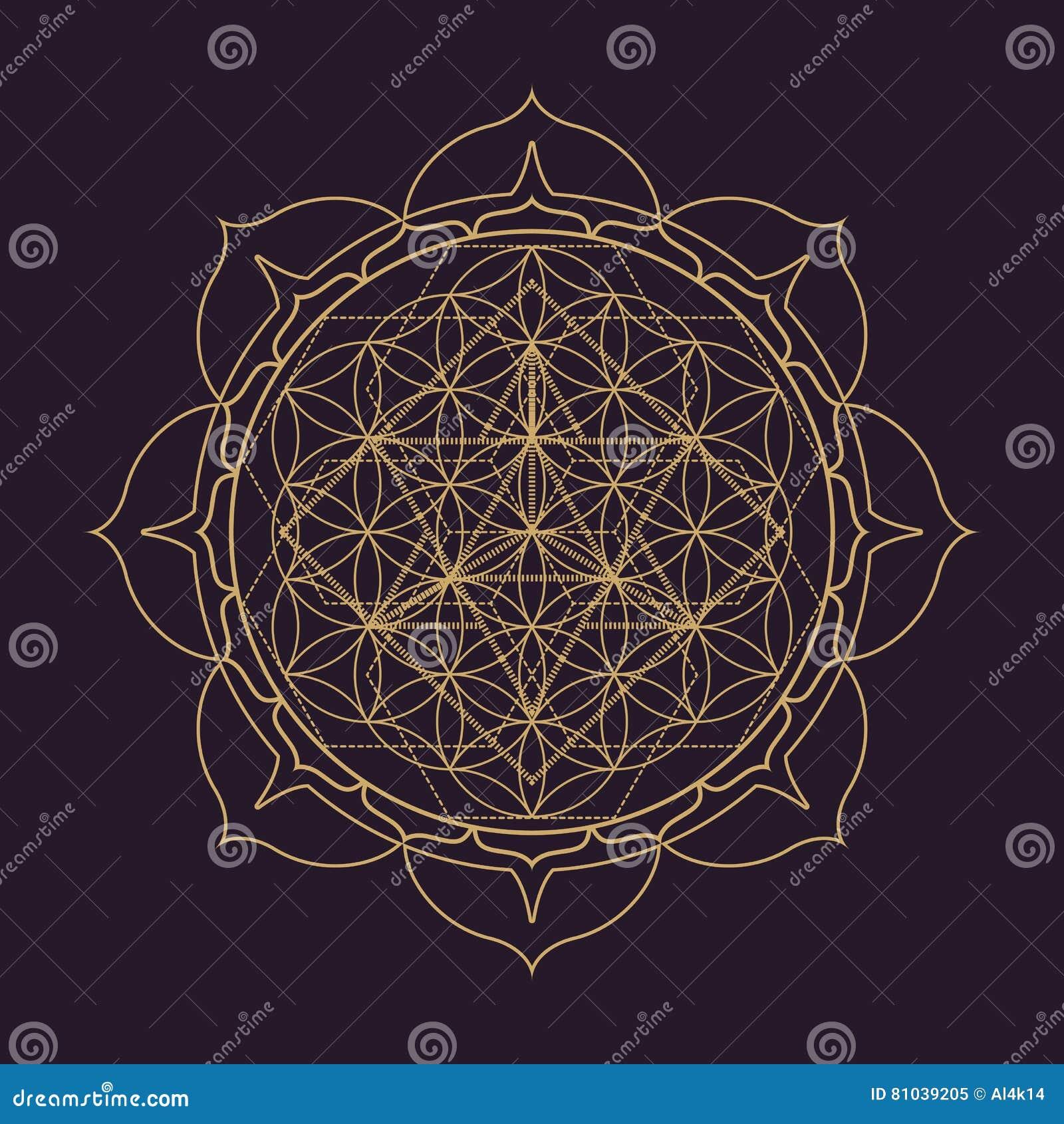 Ejemplo sagrado de la geometría de la mandala del vector