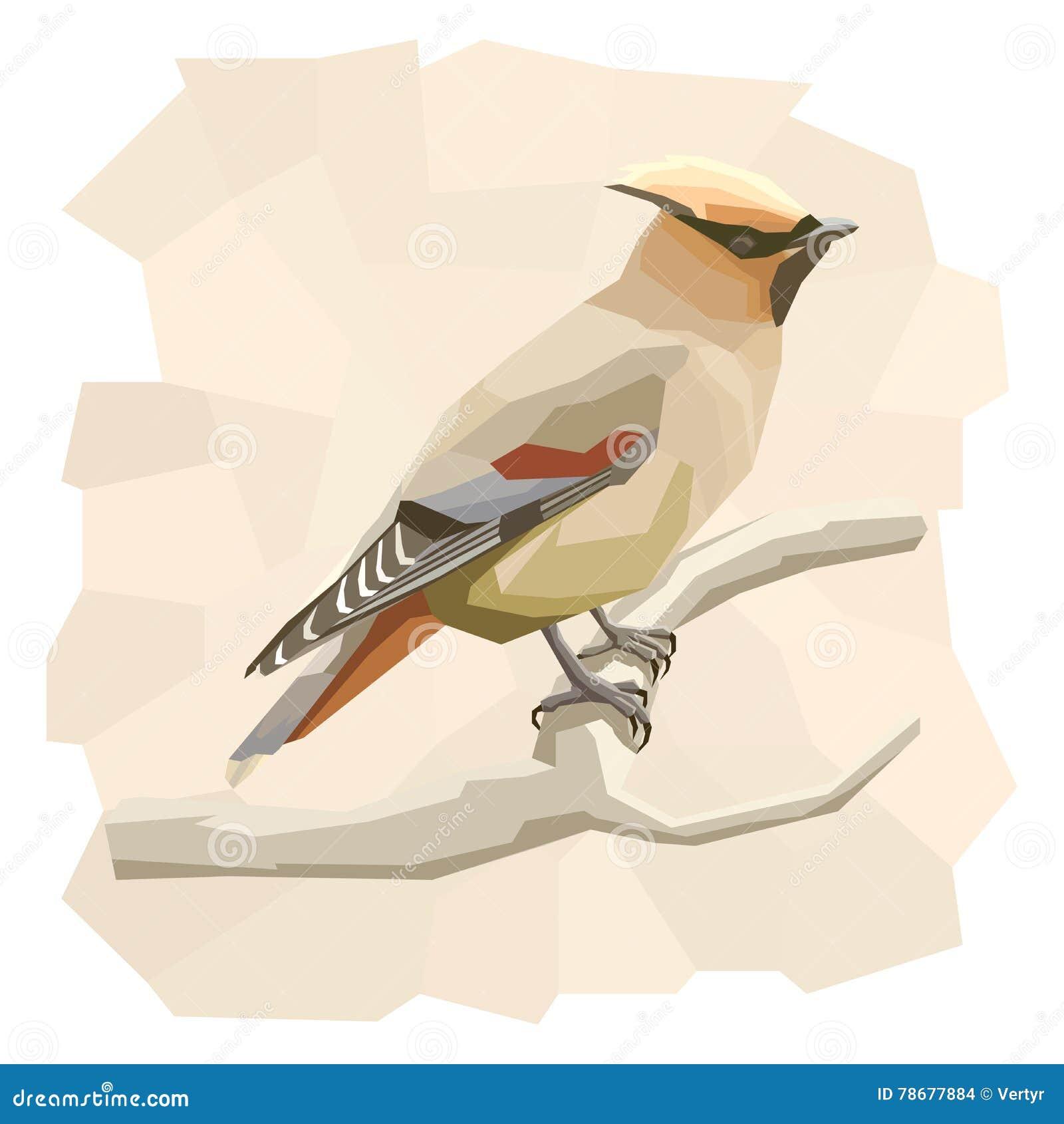 Ejemplo simple del vector del pájaro del waxwing