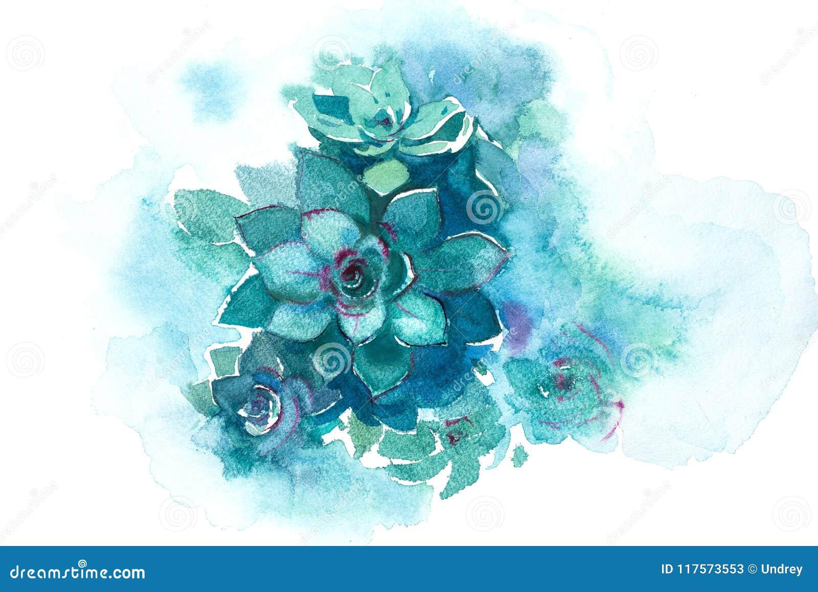 Ejemplo suculento de la acuarela de la flor de la planta del áloe del cactus