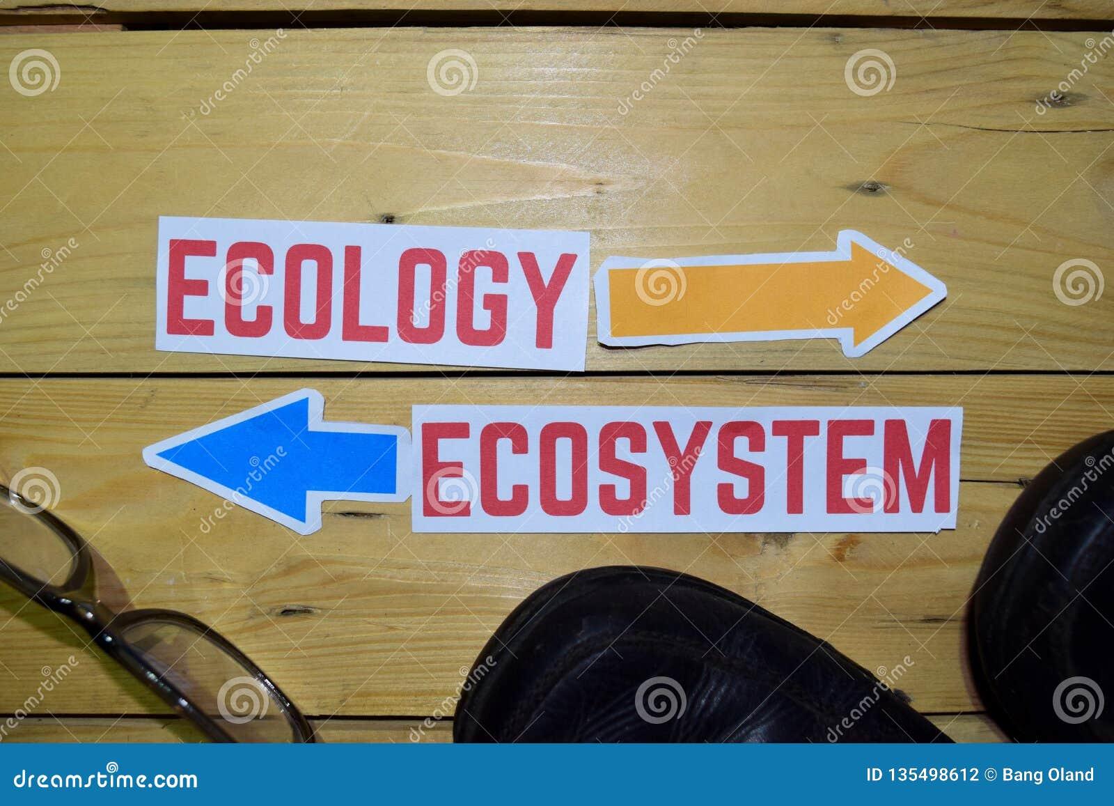 Ekologi eller ekosystem mitt emot riktningstecken med kängor och glasögon på trä