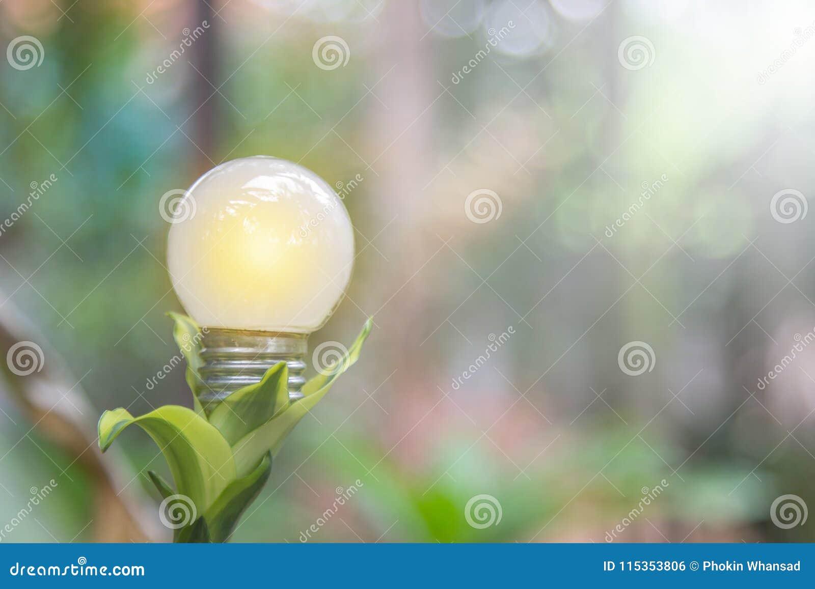 Ekologi och saveing ljusa kulor för energi som ledas med naturlig elkraft