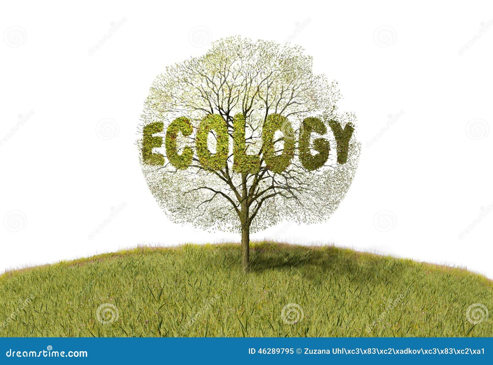 Ekologia tekst na drzewie