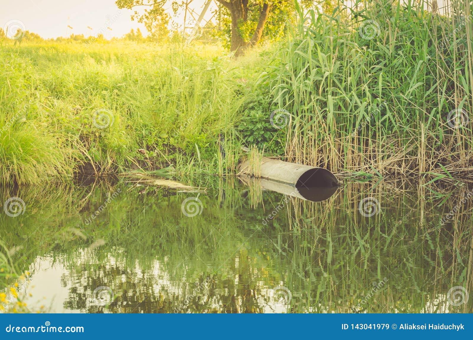 Ekologia temat: kanał ściekowy nalewa za odpady jeziorny, ściek od kanału ściekowego/zanieczyszcza jezioro