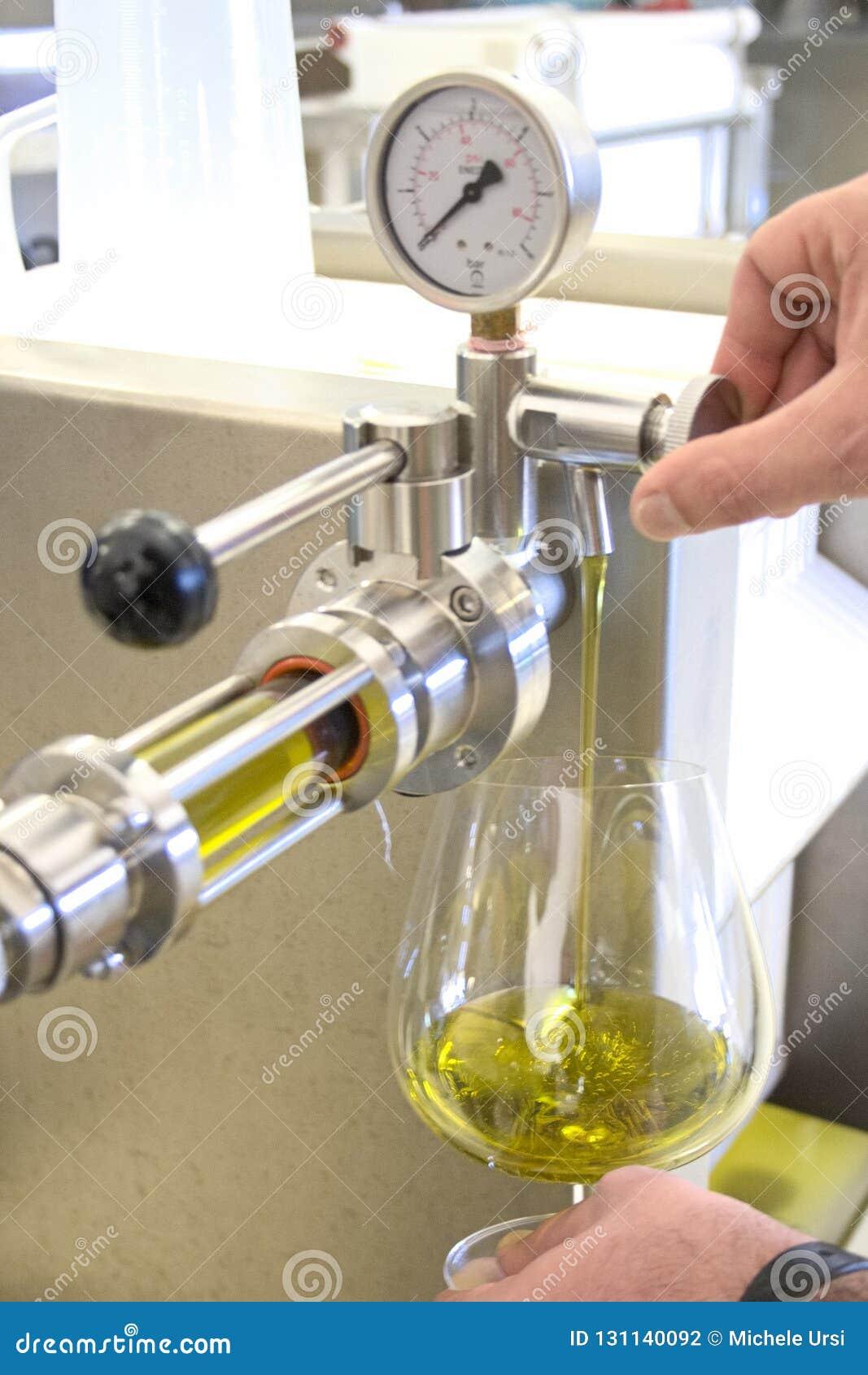 Ekologisk extra jungfrulig olivoljaproduktion med modernt teknologi, extraktion och filtrera