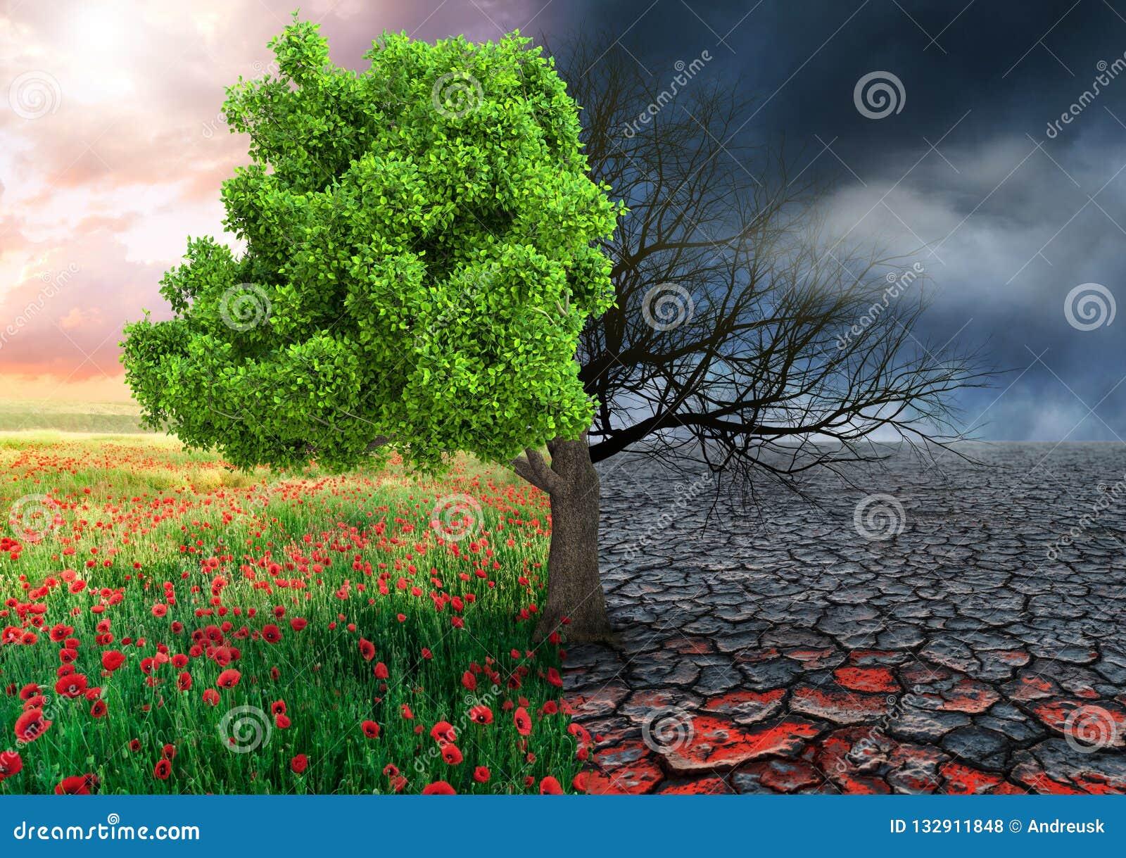 Ekologiskt begrepp med trädet och ändrande landskap för klimat