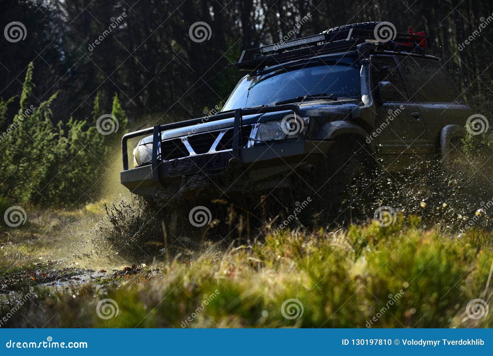 Ekstremum, wyzwanie i 4x4 pojazdu pojęcie, Offroad rasa na natury tle Samochodowy ścigać się w lasowym SUV lub offroad samochodzi