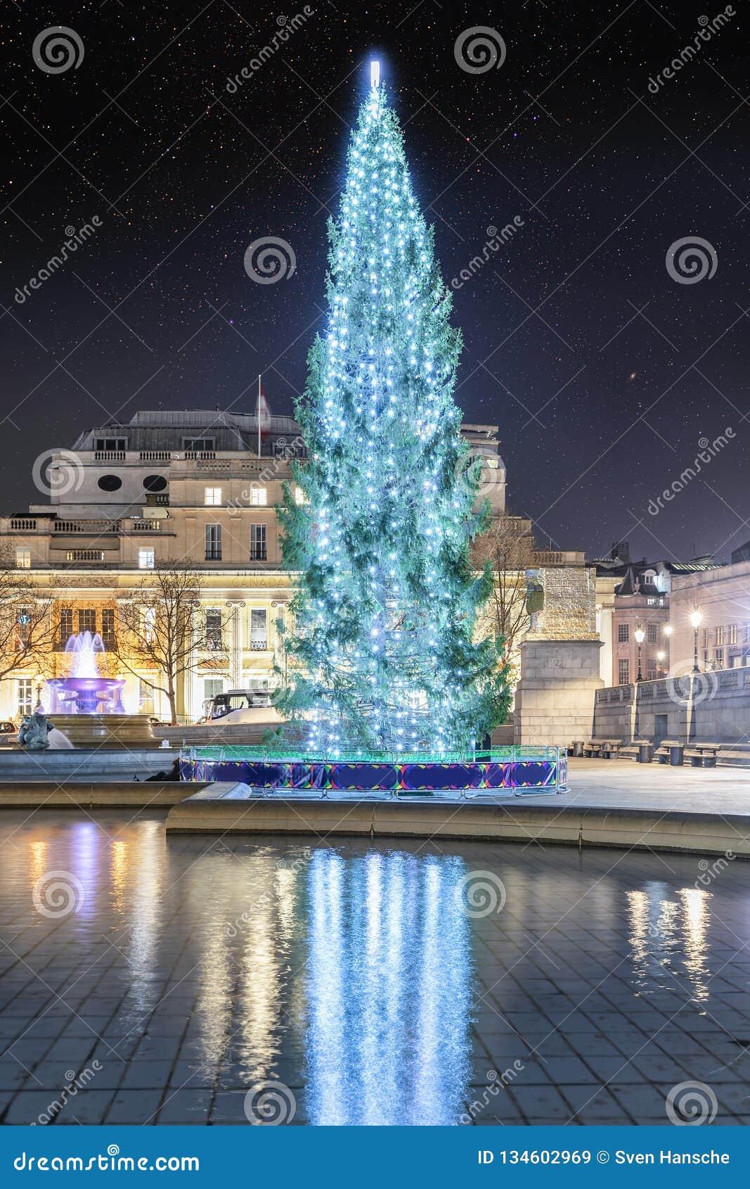 El árbol de navidad en Trafalgar Square en Londres, Reino Unido