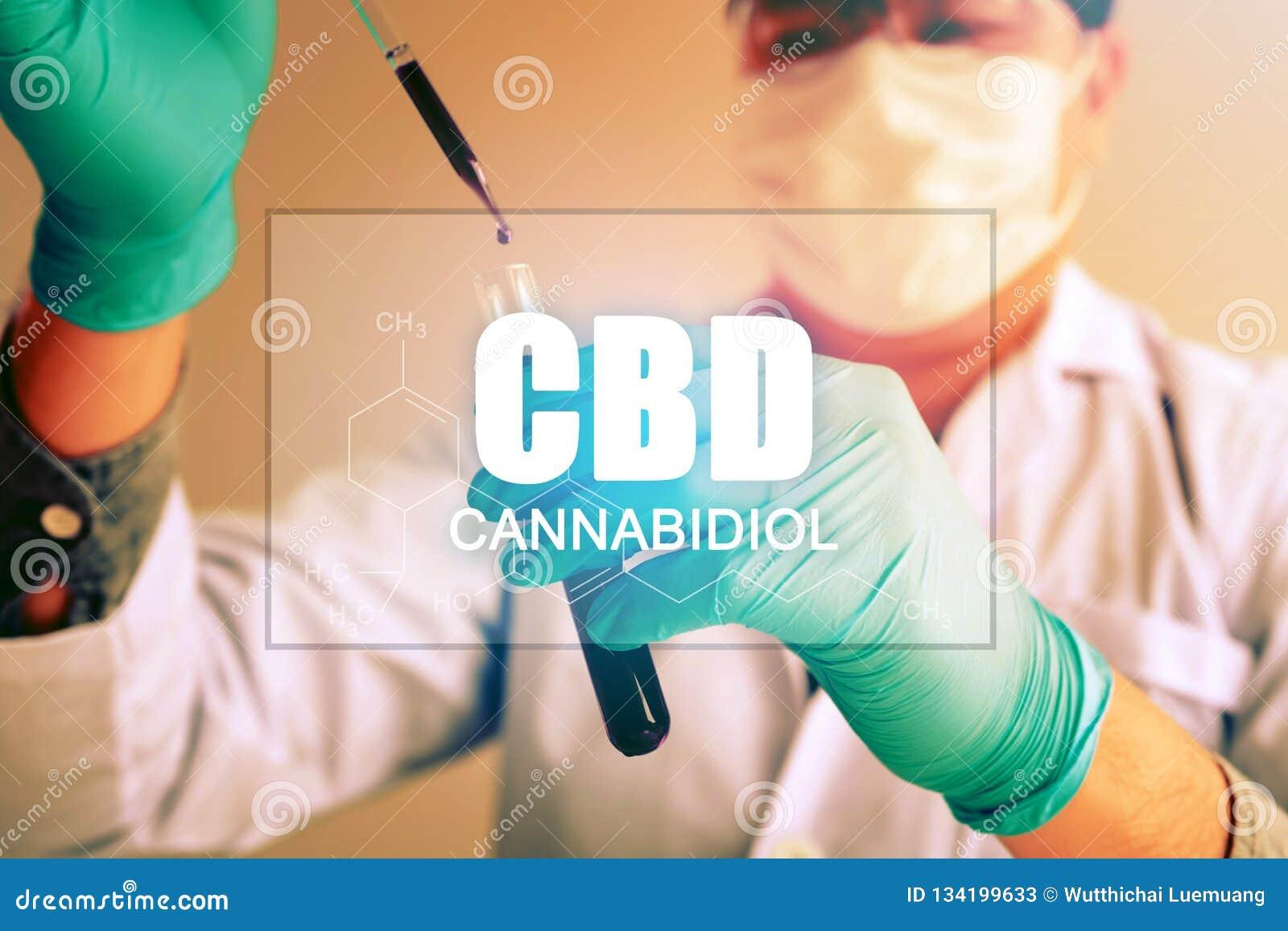 El aceite del cáñamo, concepto de CBD, químico conduce experimentos sintetizando compuestos con usar el dropper en un tubo de ens