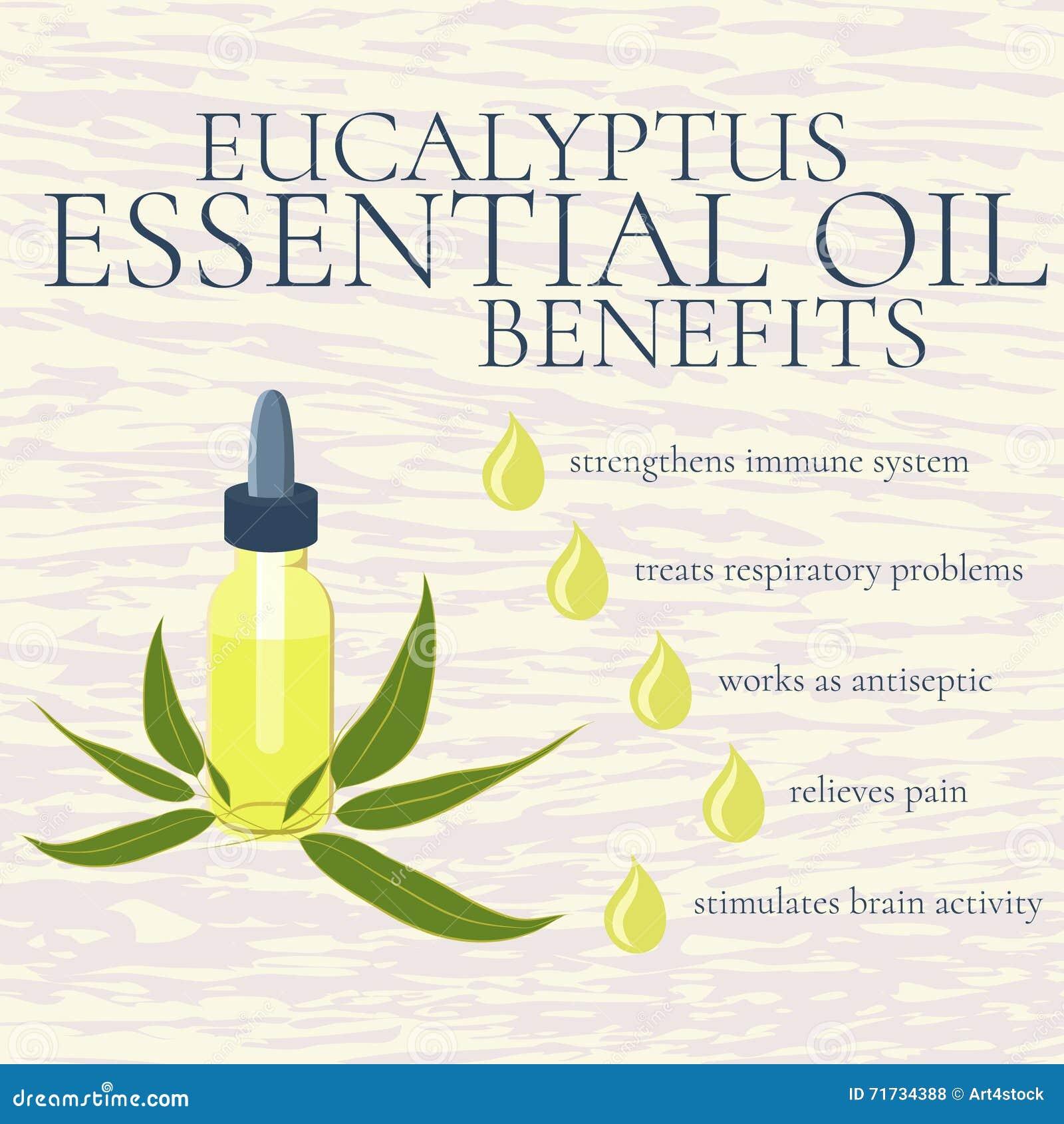 El aceite esencial del eucalipto beneficia a infographics