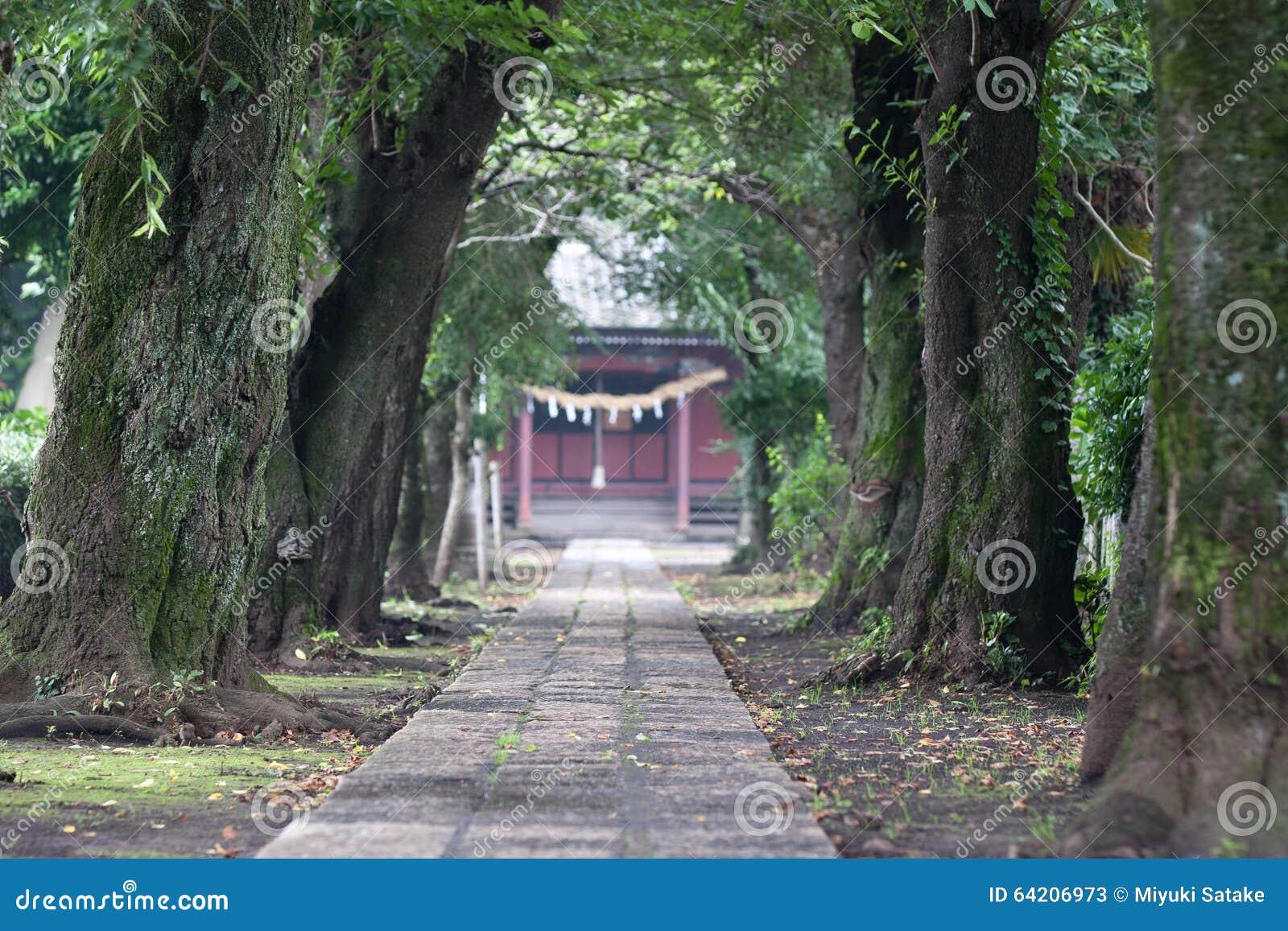 El acercamiento delantero al shirine