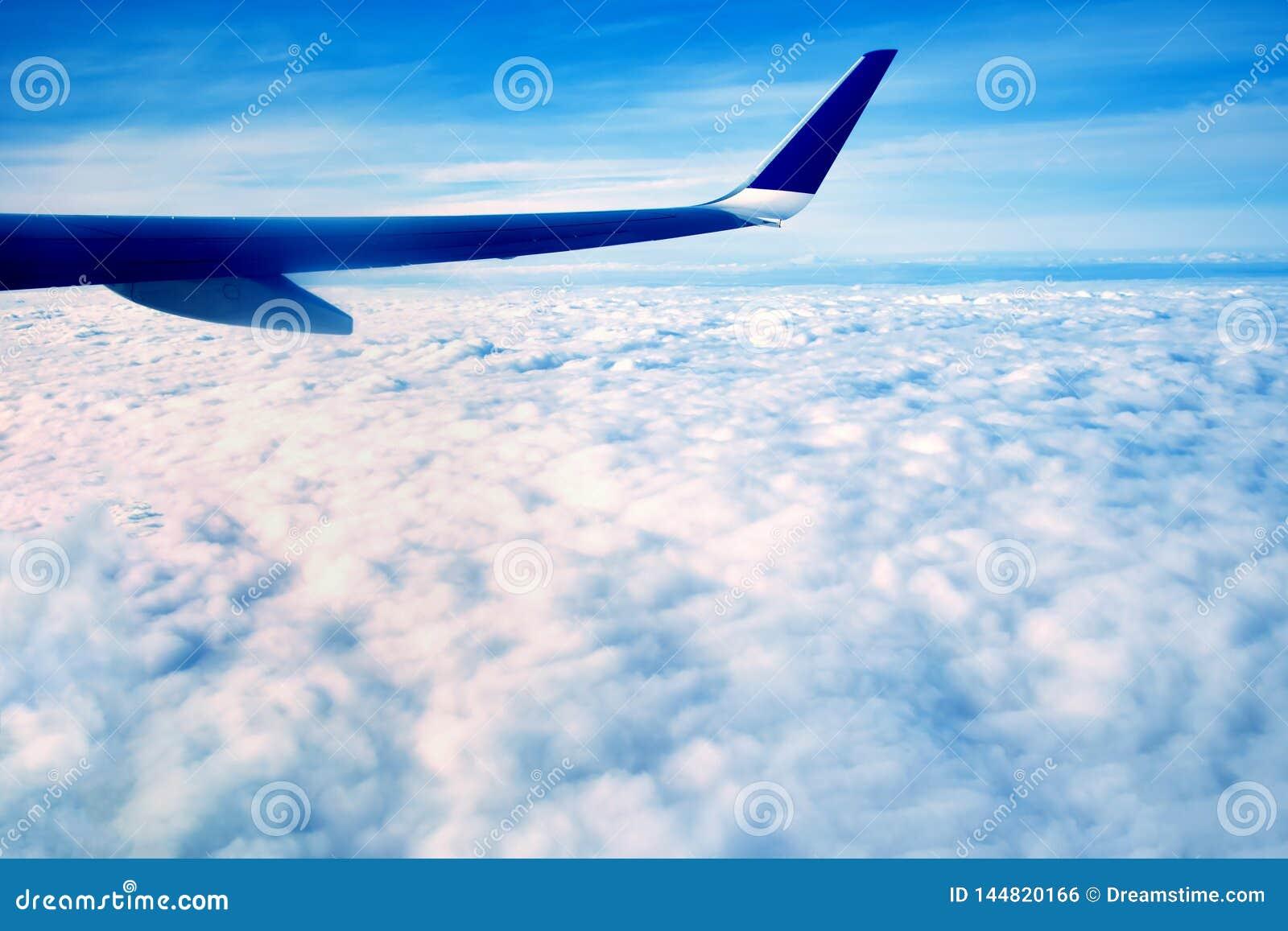 El ala azul de un aeroplano grande, volando sobre las nubes blancas de la mañana, en la mucha altitud sobre la tierra, contra el