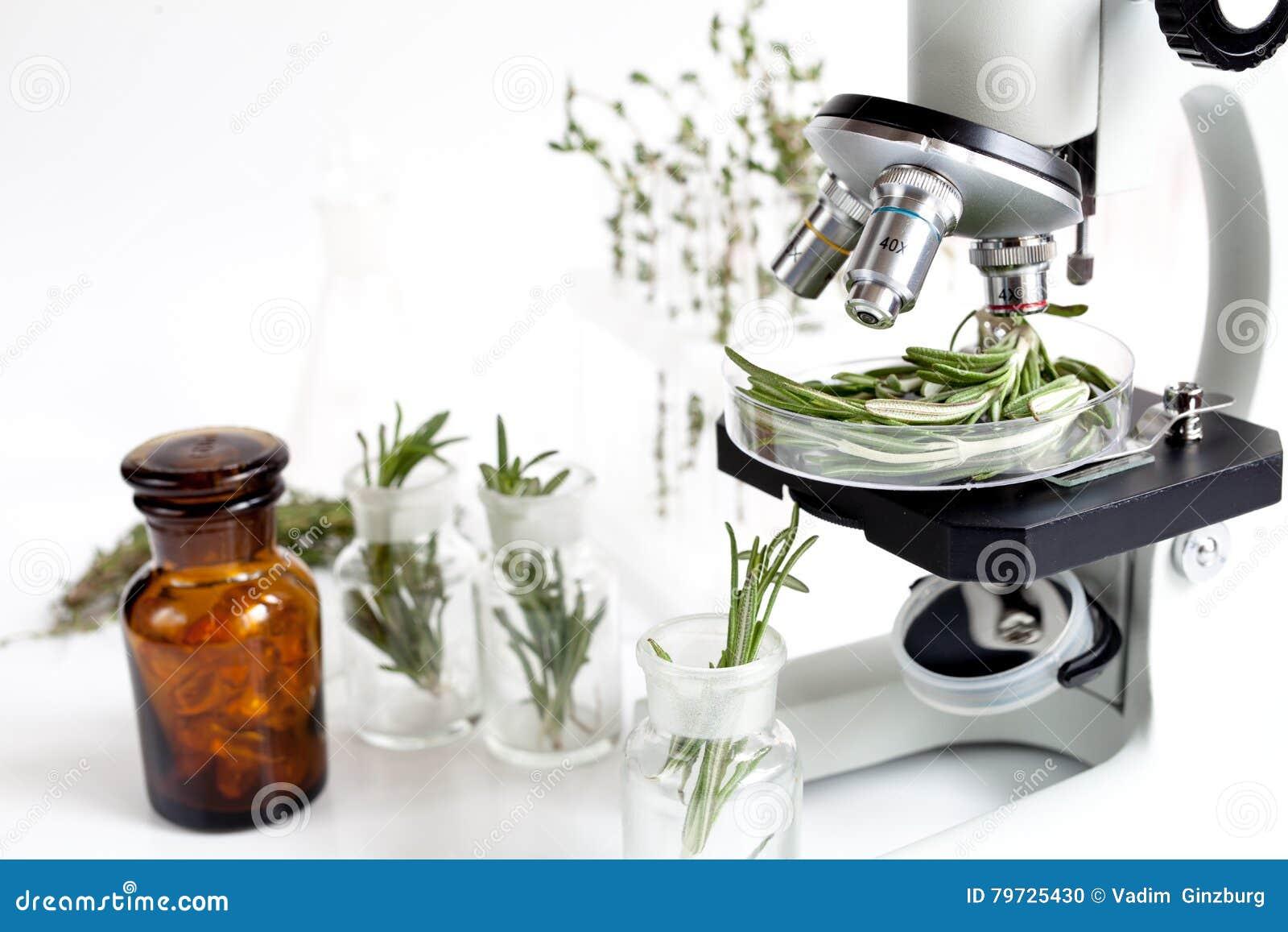 El análisis de los pesticidas de la comida comprueba el romero en laboratorio