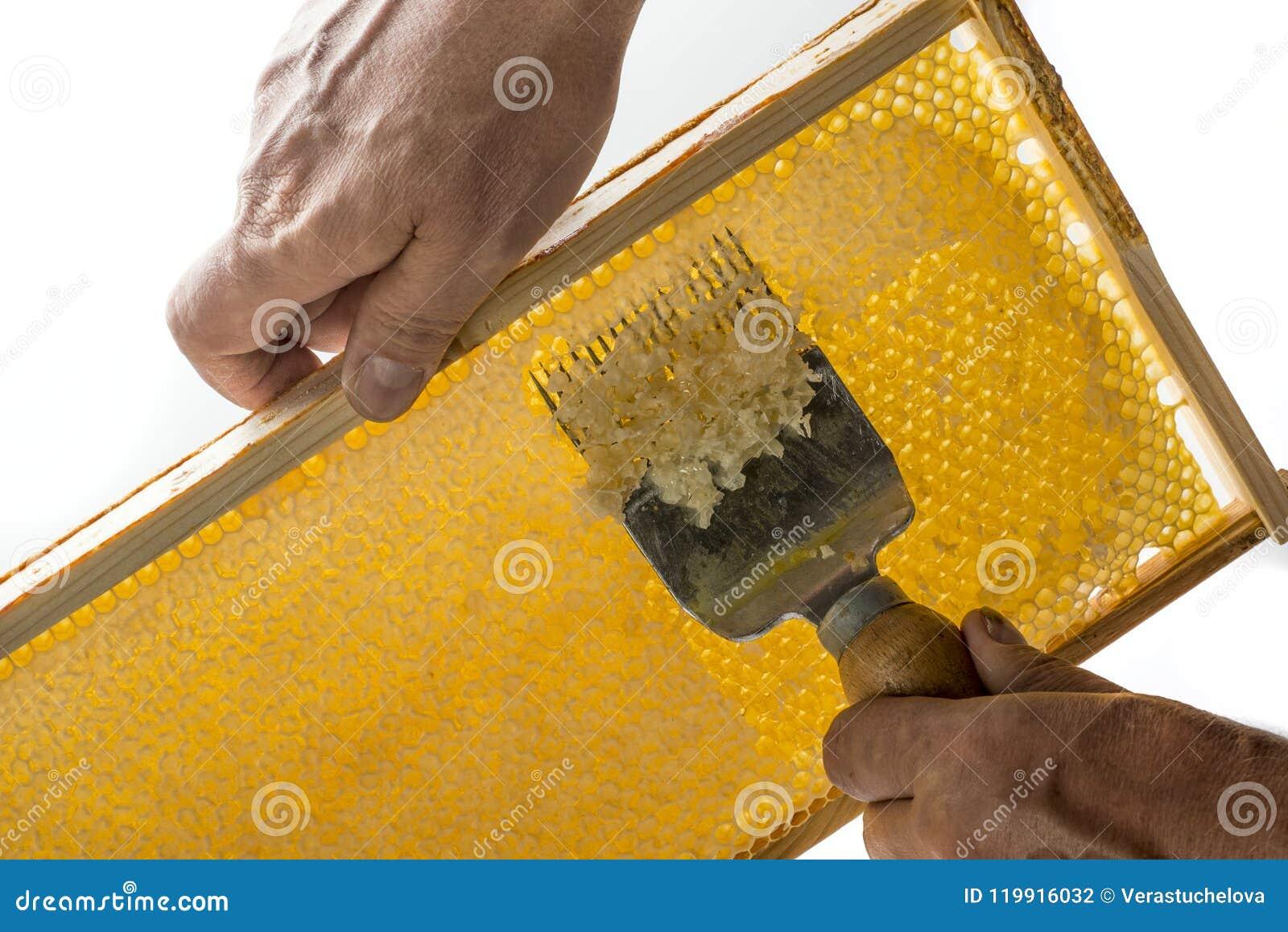 El apicultor está destapando el panal