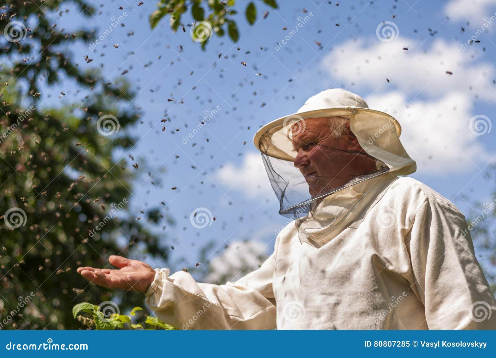 El apicultor y la abeja pululan, miel de la colmena del colmenar