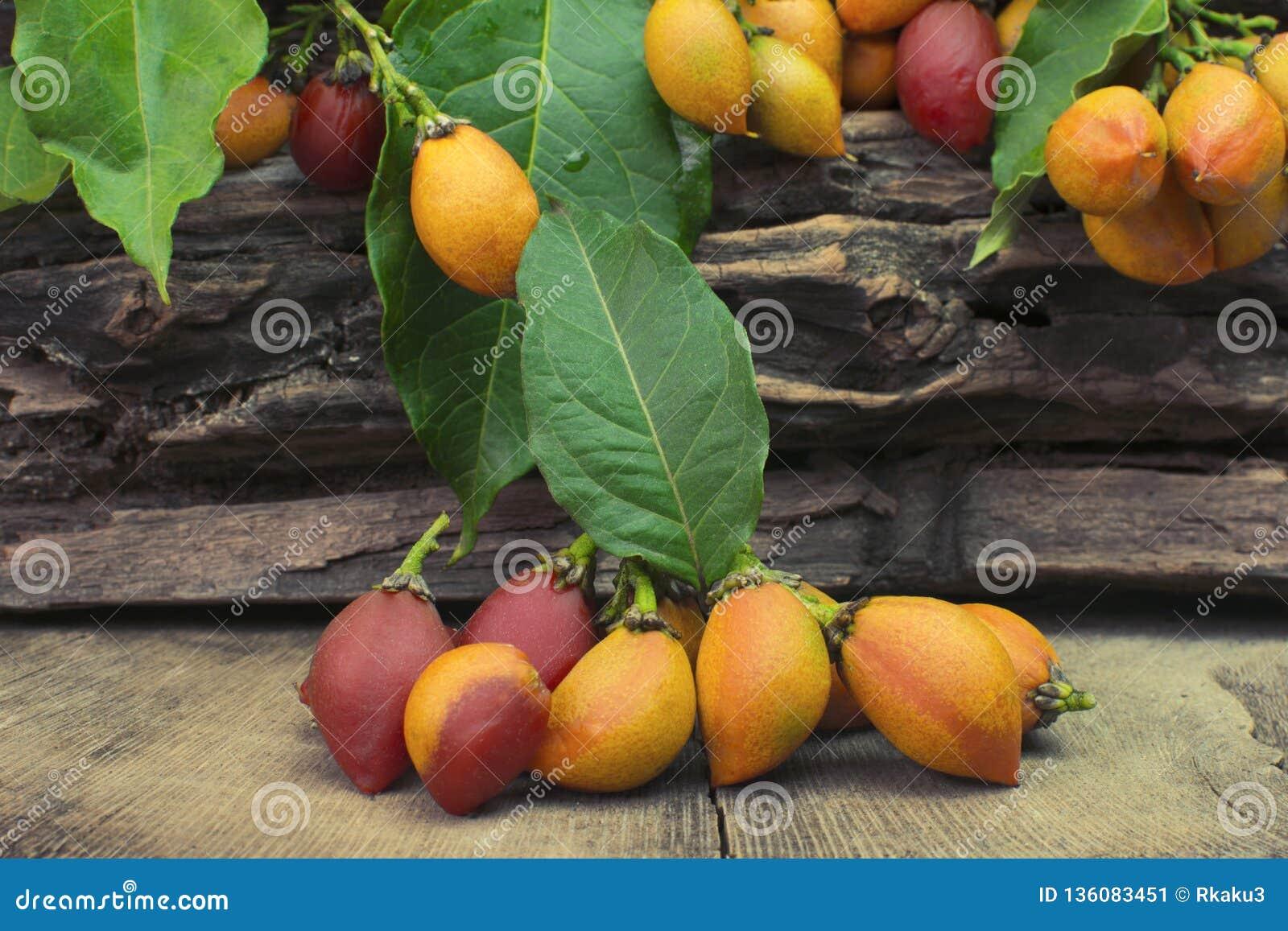 El argentea inusual de Bunchosia de la fruta comestible llamó caferana en el Brasil en el fondo de madera