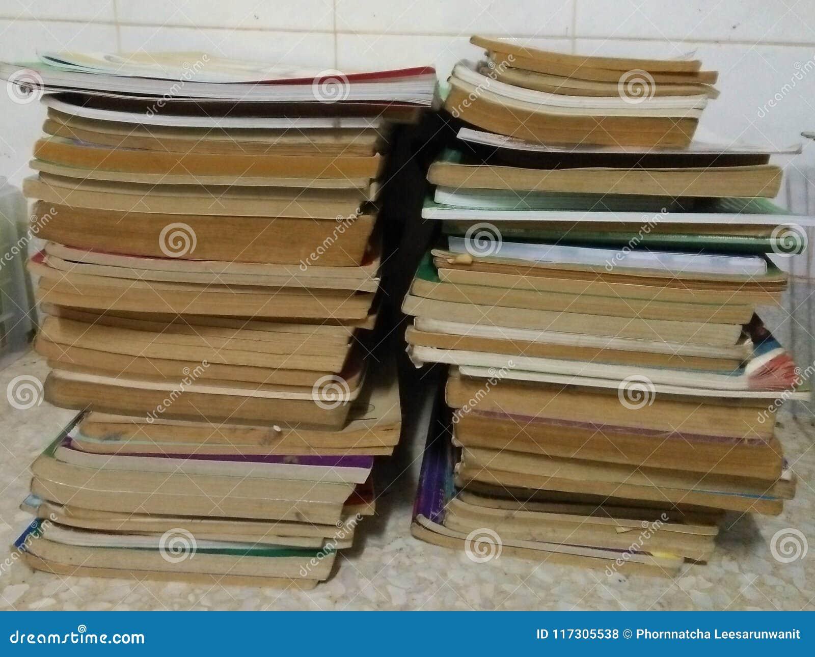 El arreglo de dos filas de libros marrones viejos