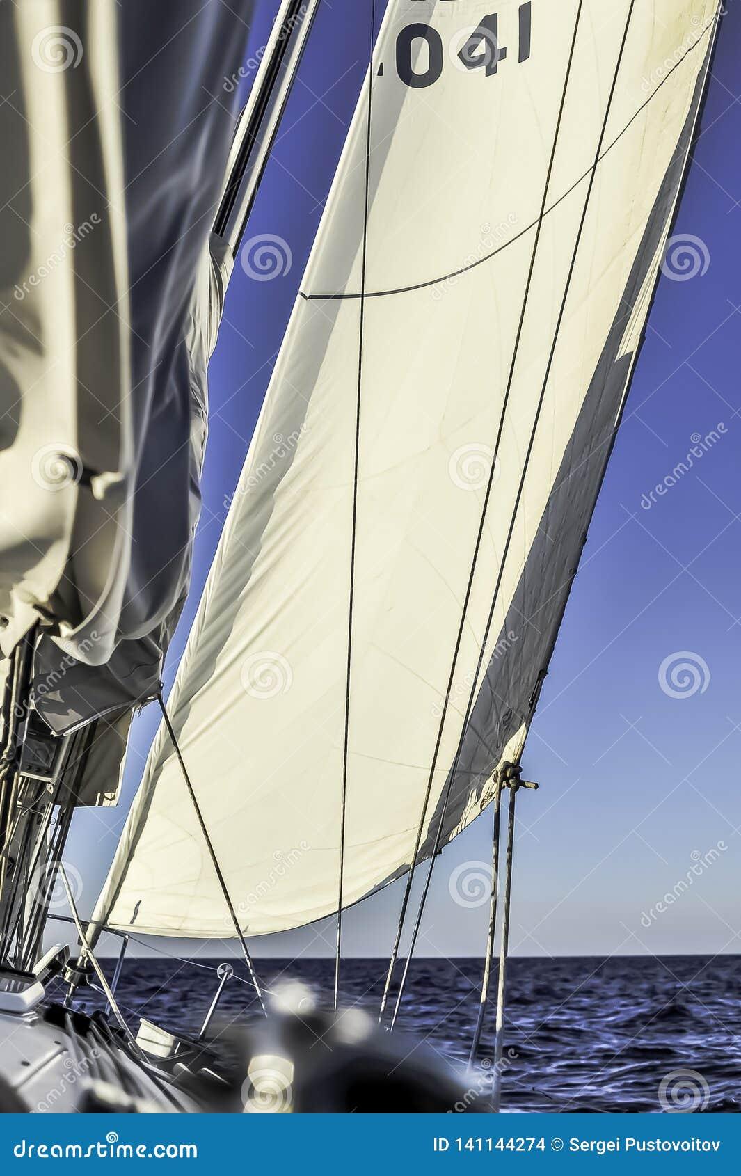 El barco de vela con la disposición navega el deslizamiento en el mar abierto en la puesta del sol