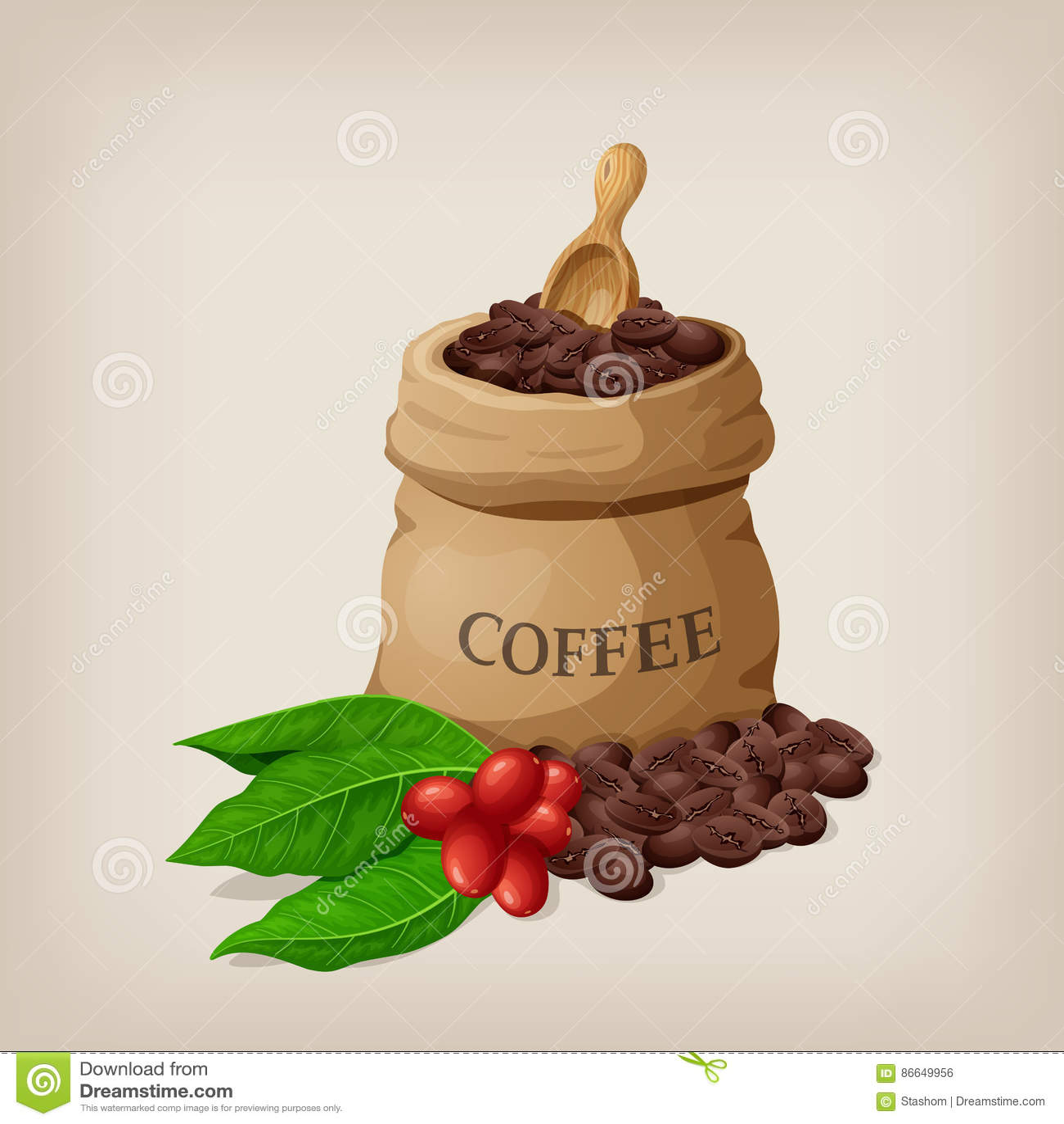 El bolso de café con las habas en saco de la lona y el café ramifican con las hojas