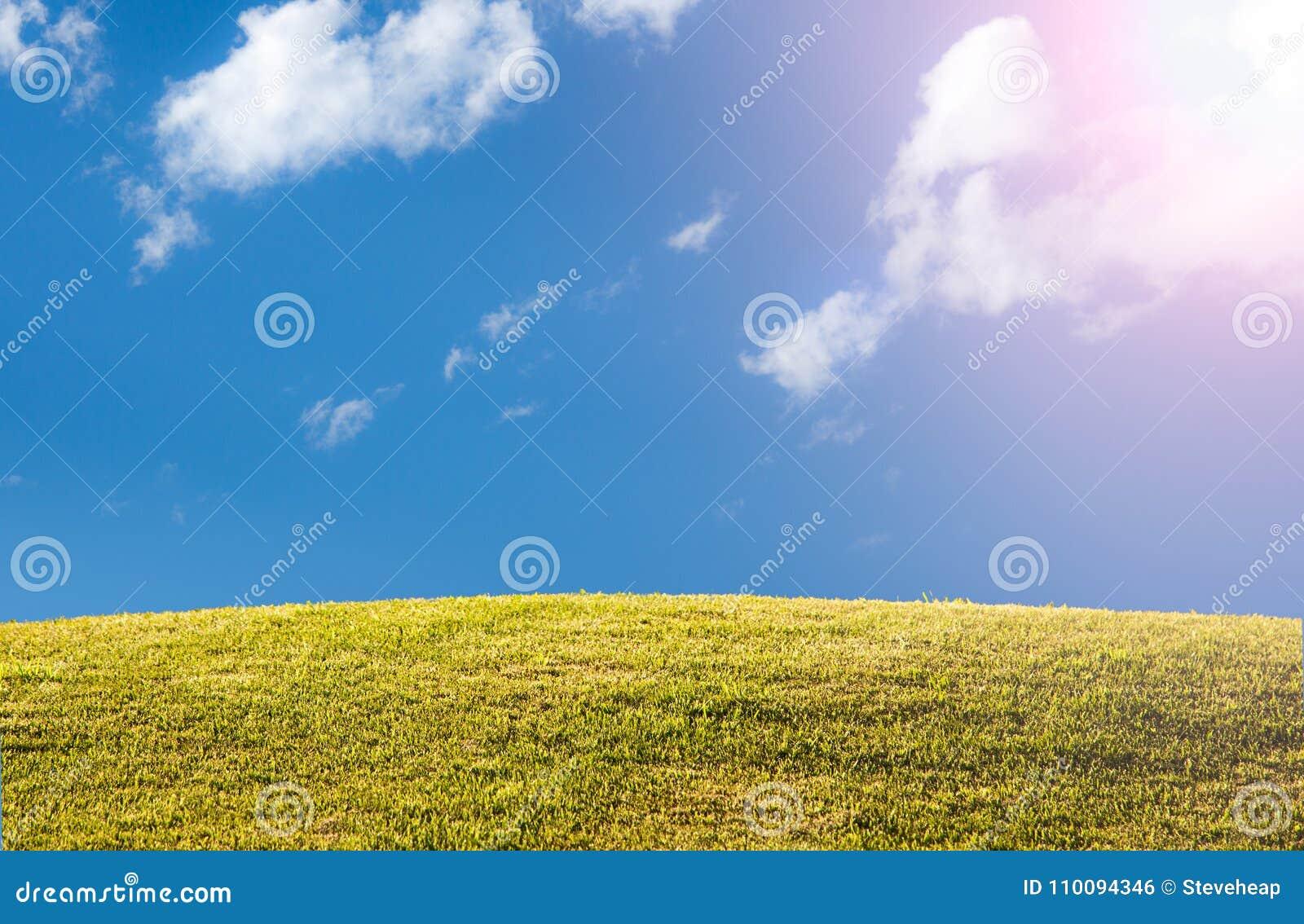 El césped o el prado herboso verde con el cielo azul y el sol señala por medio de luces