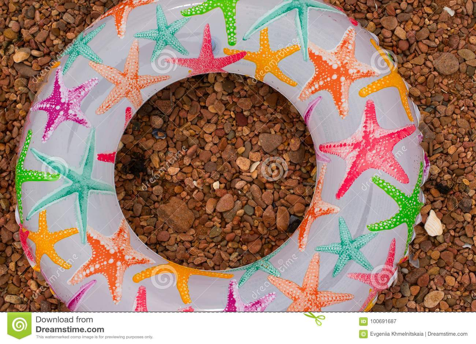 El círculo inflable colorido del bebé miente en la orilla