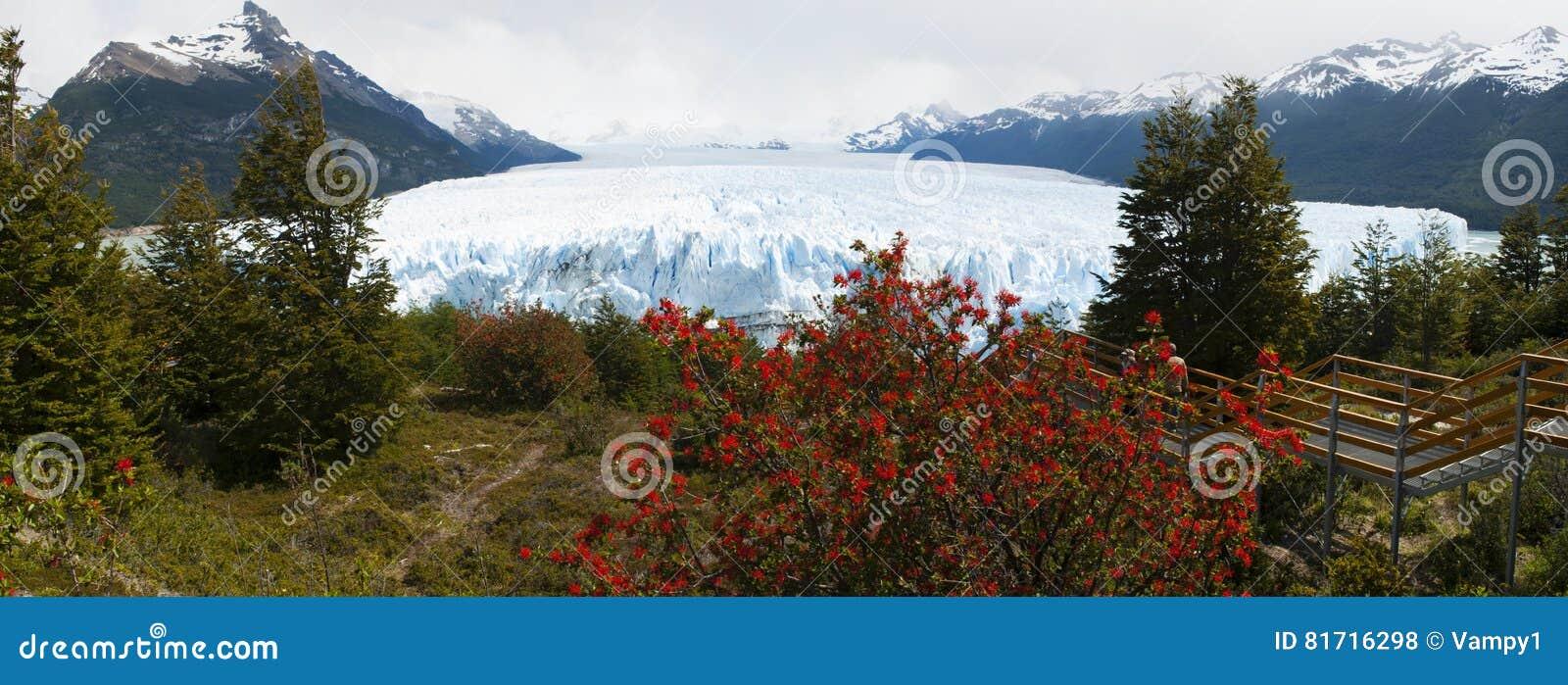 EL Calafate, parque nacional de geleiras, Patagonia, Argentina, Ámérica do Sul